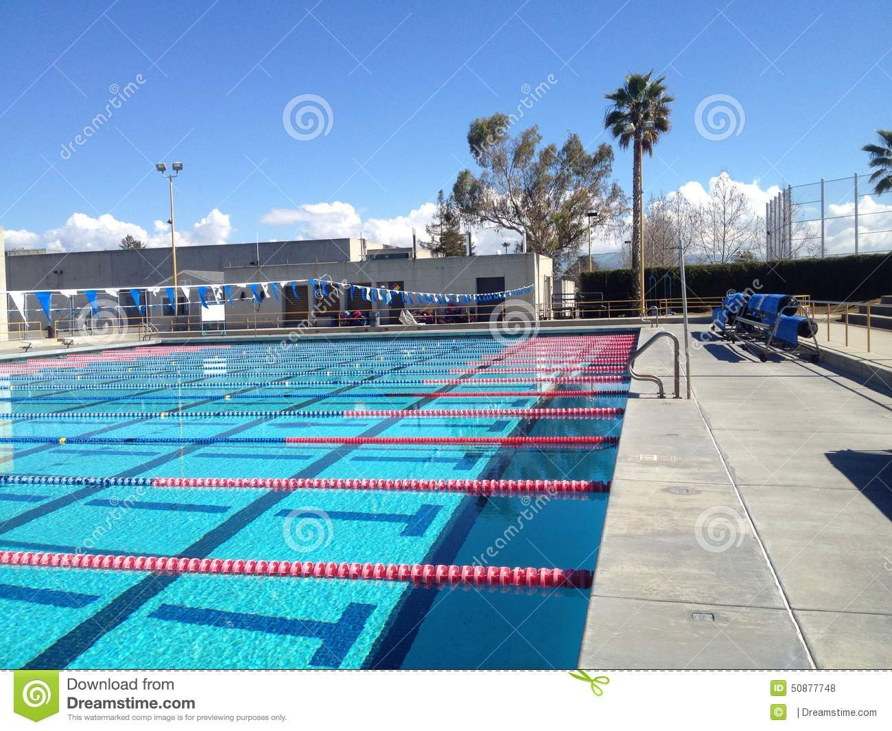 Olympic Size Pool Stock Photo Image 50877748