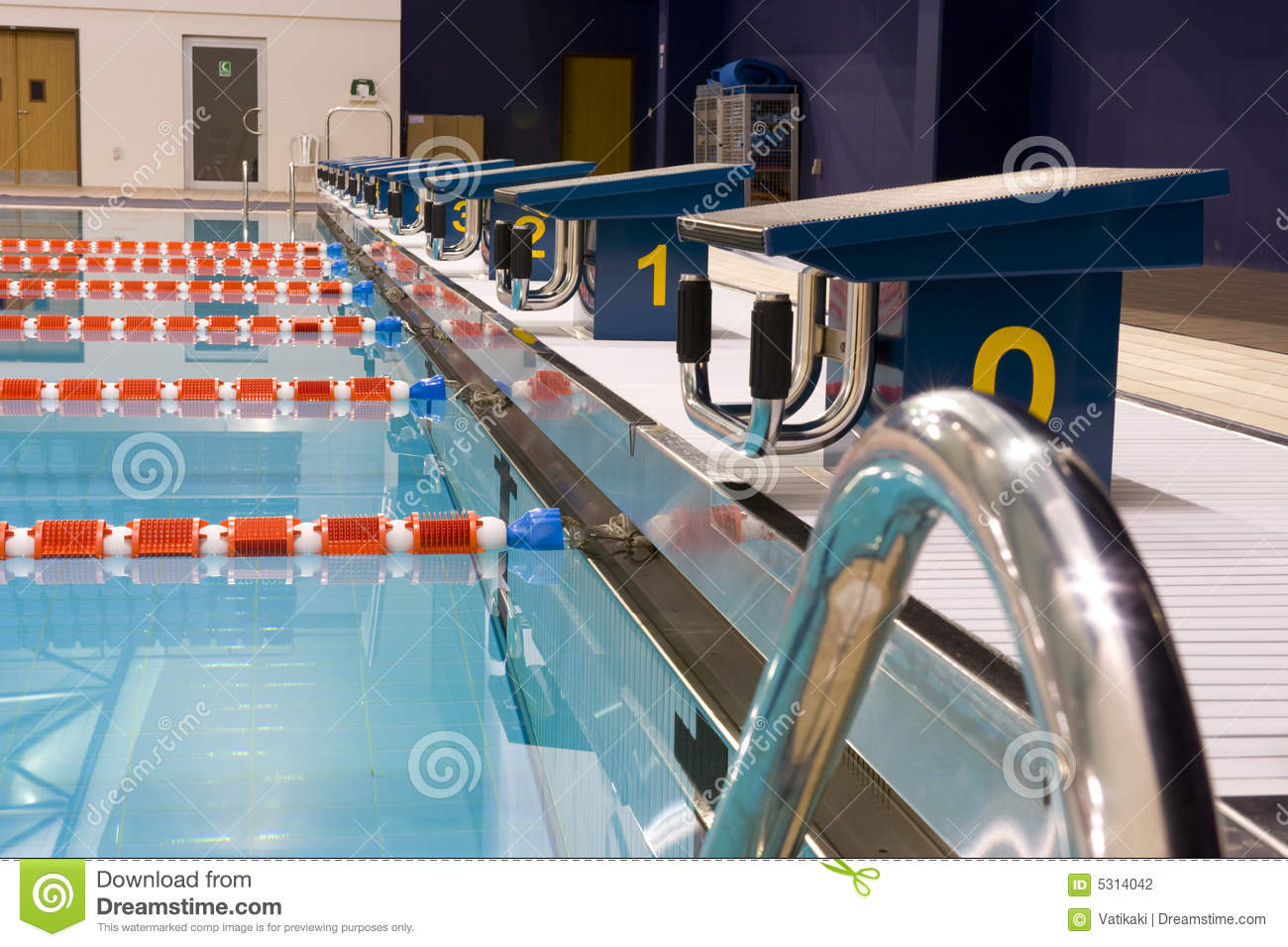 Olympic Swimming Pool Stock Photography Image 5314042