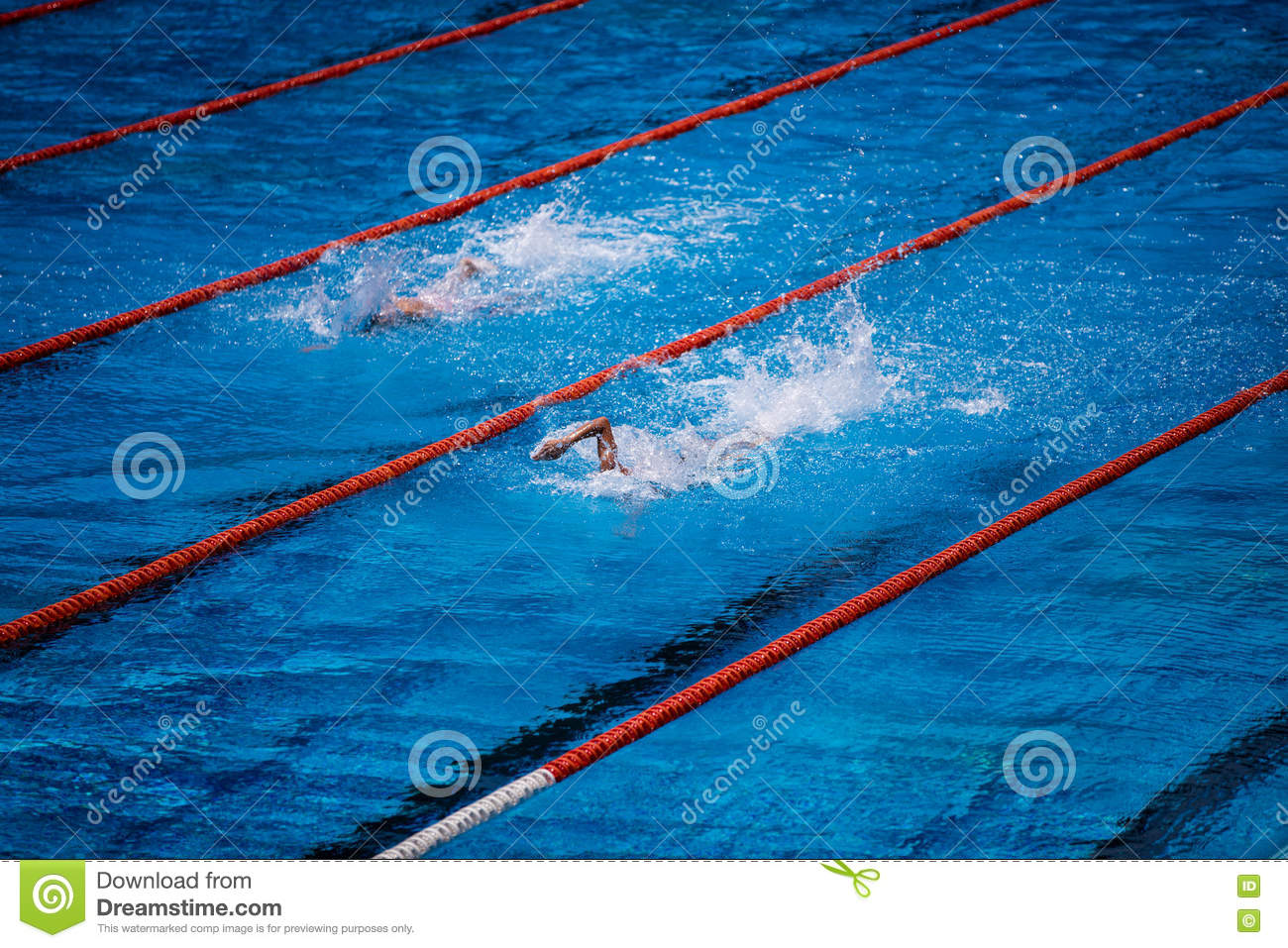 olympic swimming pool clipart. royaltyfree stock photo download olympic swimming pool clipart