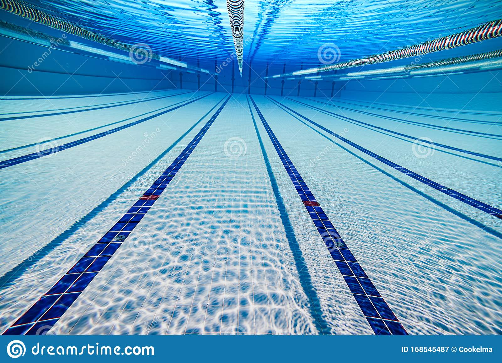 Olympic Swimming Pool Under Water Background Stock Image Image Of Leisure Recreation 168545487