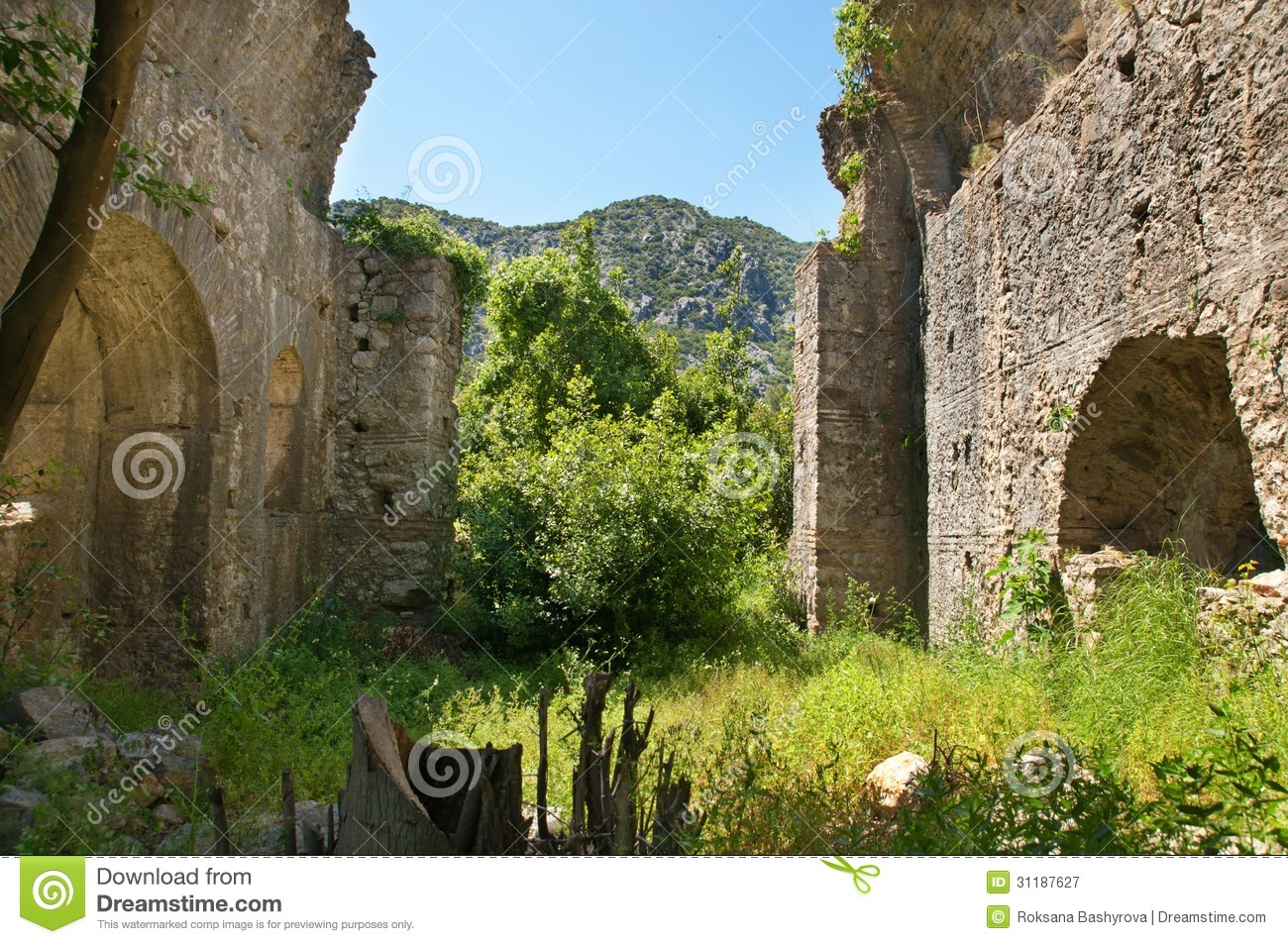 Olympos Ruins Royalty Free Stock Photography - Image: 31187627