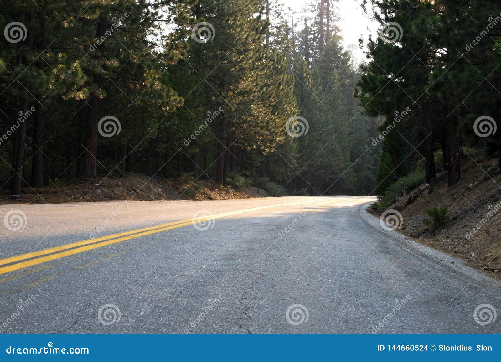 Om aard te bewaren Sequoia Nationaal Bos