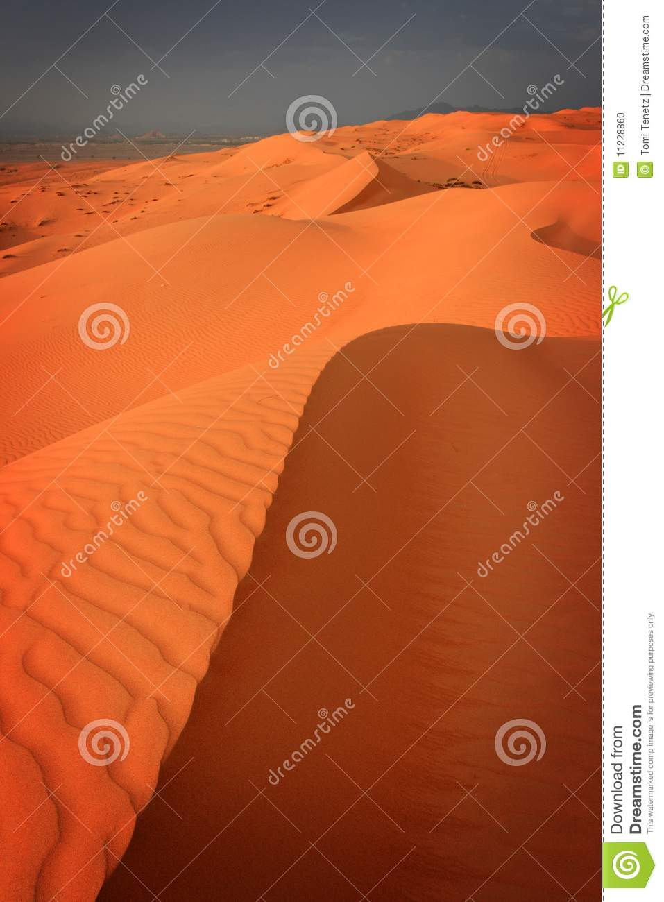 Wahiba Sands Oman  city images : Beautiful sand desert area called Wahiba Sands in Oman just before ...