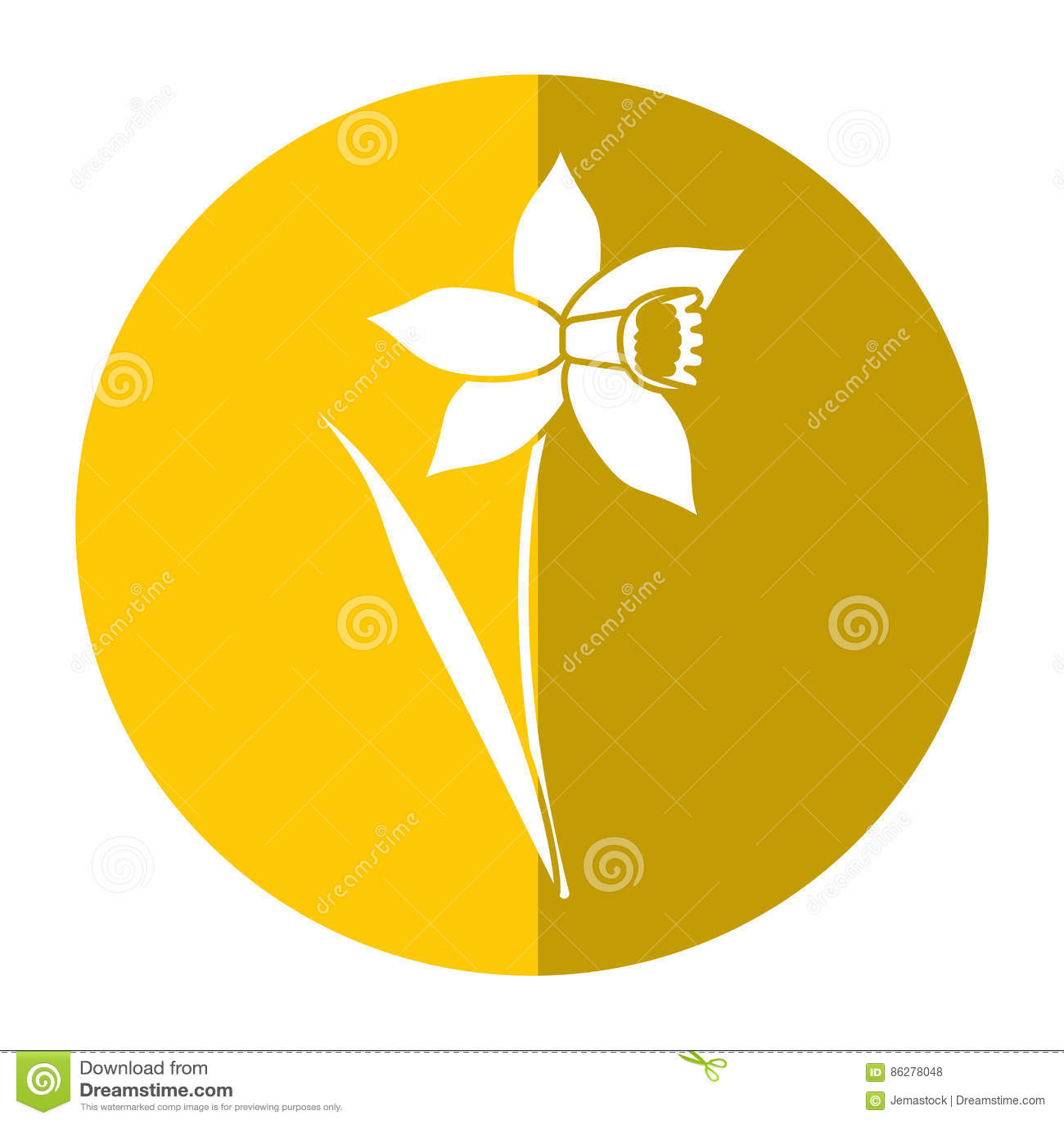 Ombra della fioritura della foglia del fiore del narciso