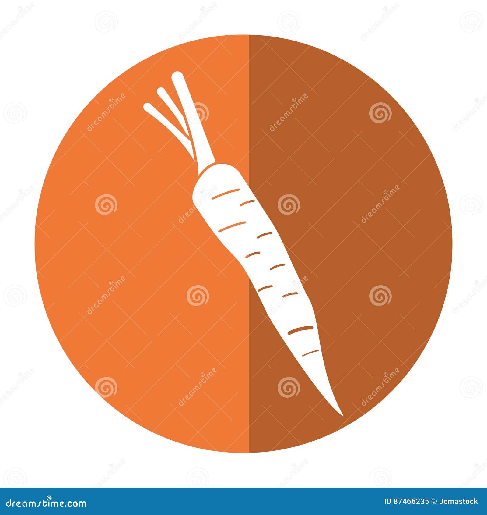Ombra di verdure di nutrizione della carota