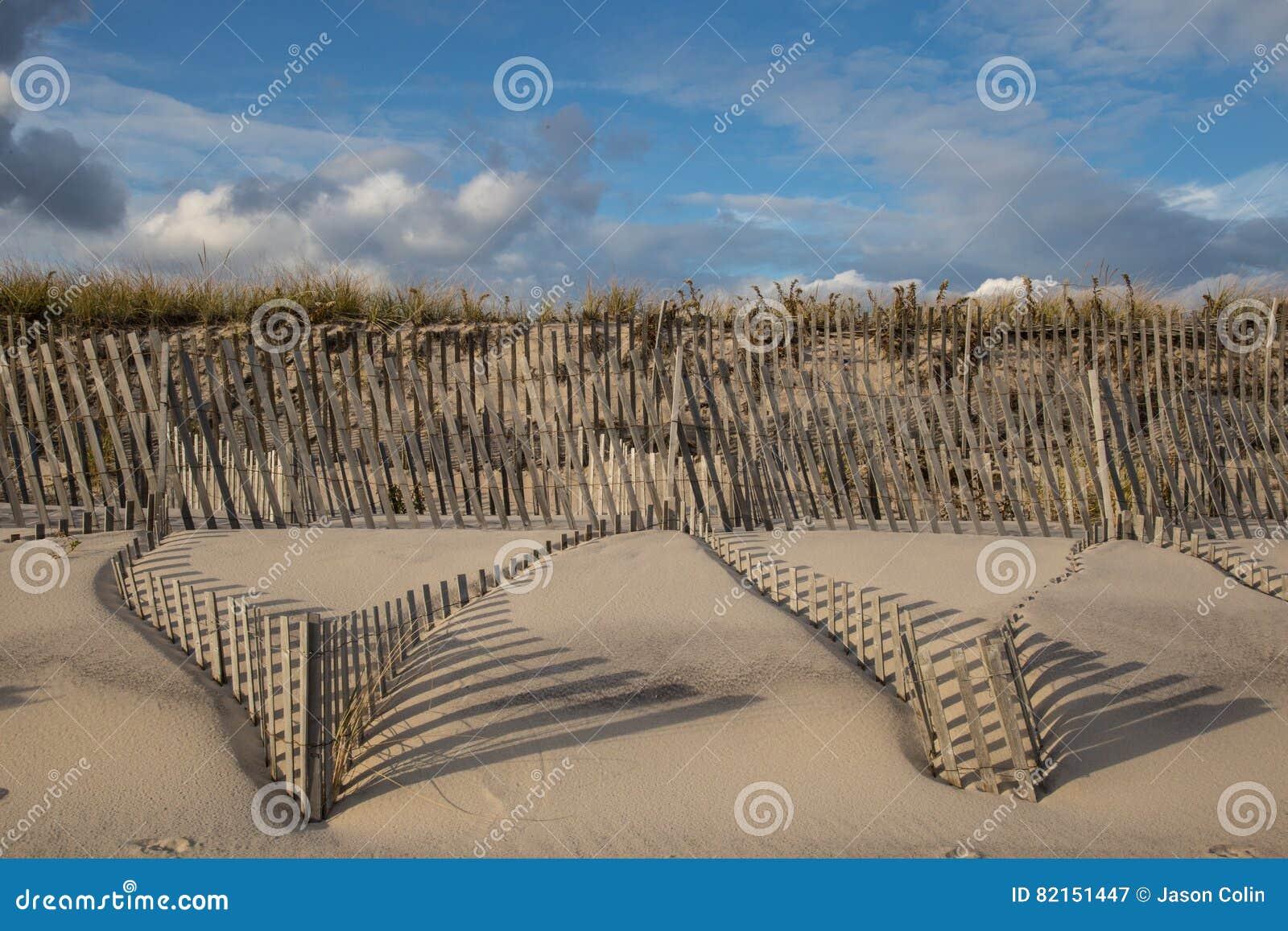 Ombres balayées par le vent de barrières de dune de sable
