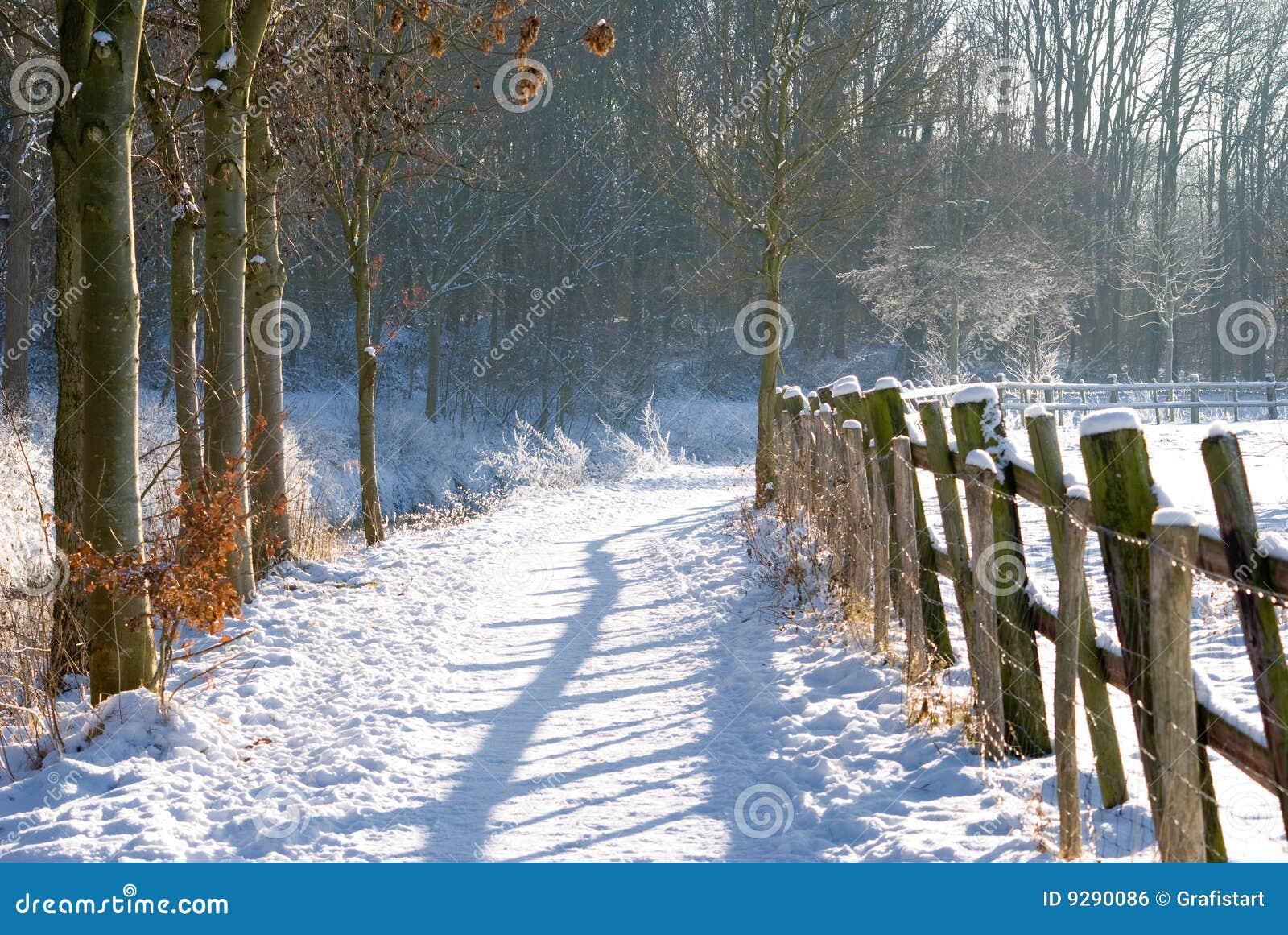 Omheining in de winterlandschap