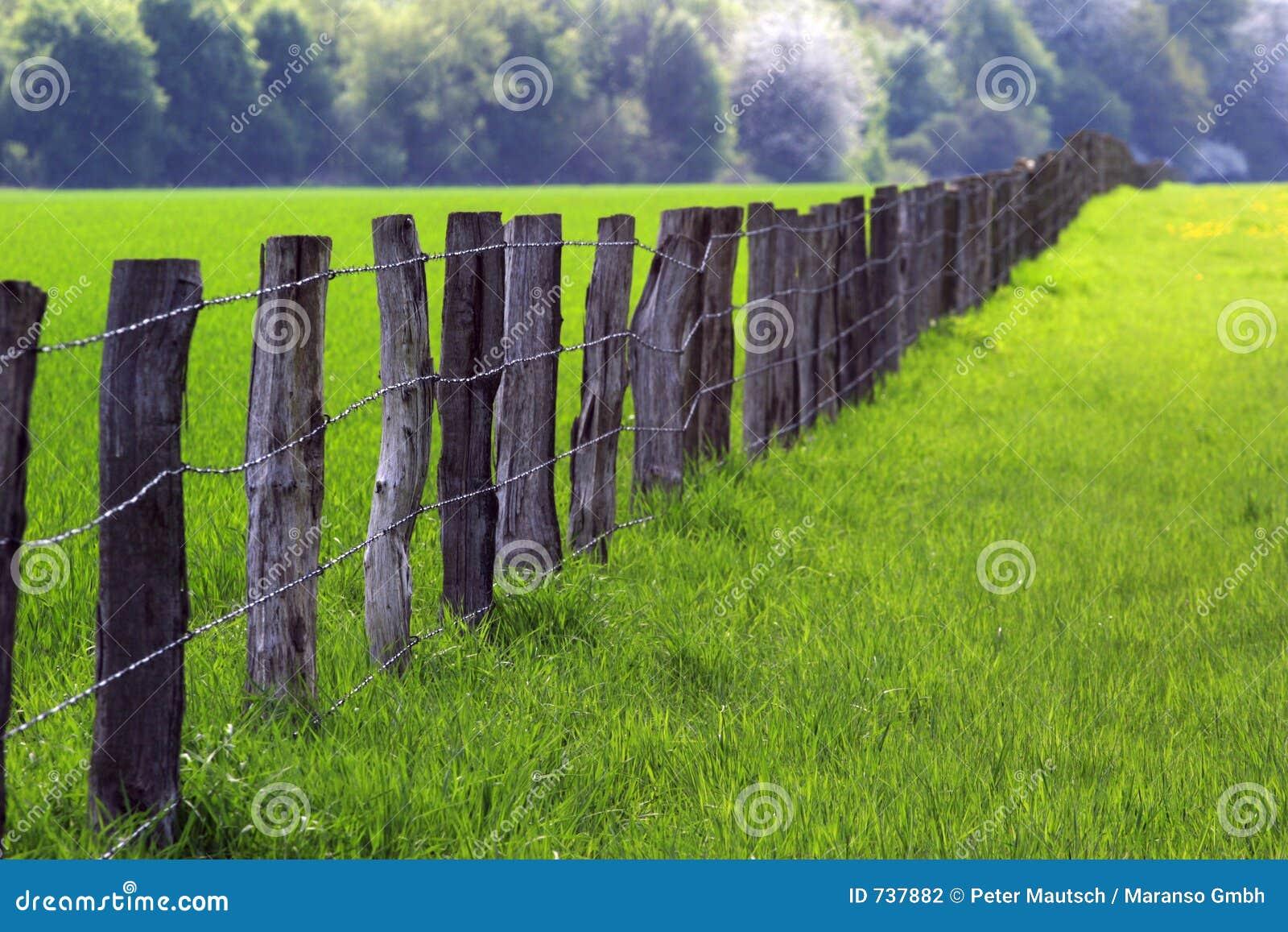 Omheining over landbouwgrond 03
