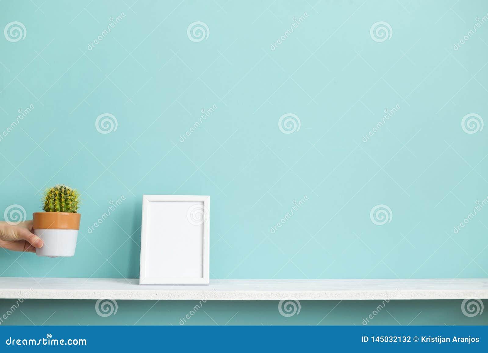 Omlijstingmodel Witte plank tegen pastelkleur turkooise muur met hand die ingemaakte cactus neerzetten