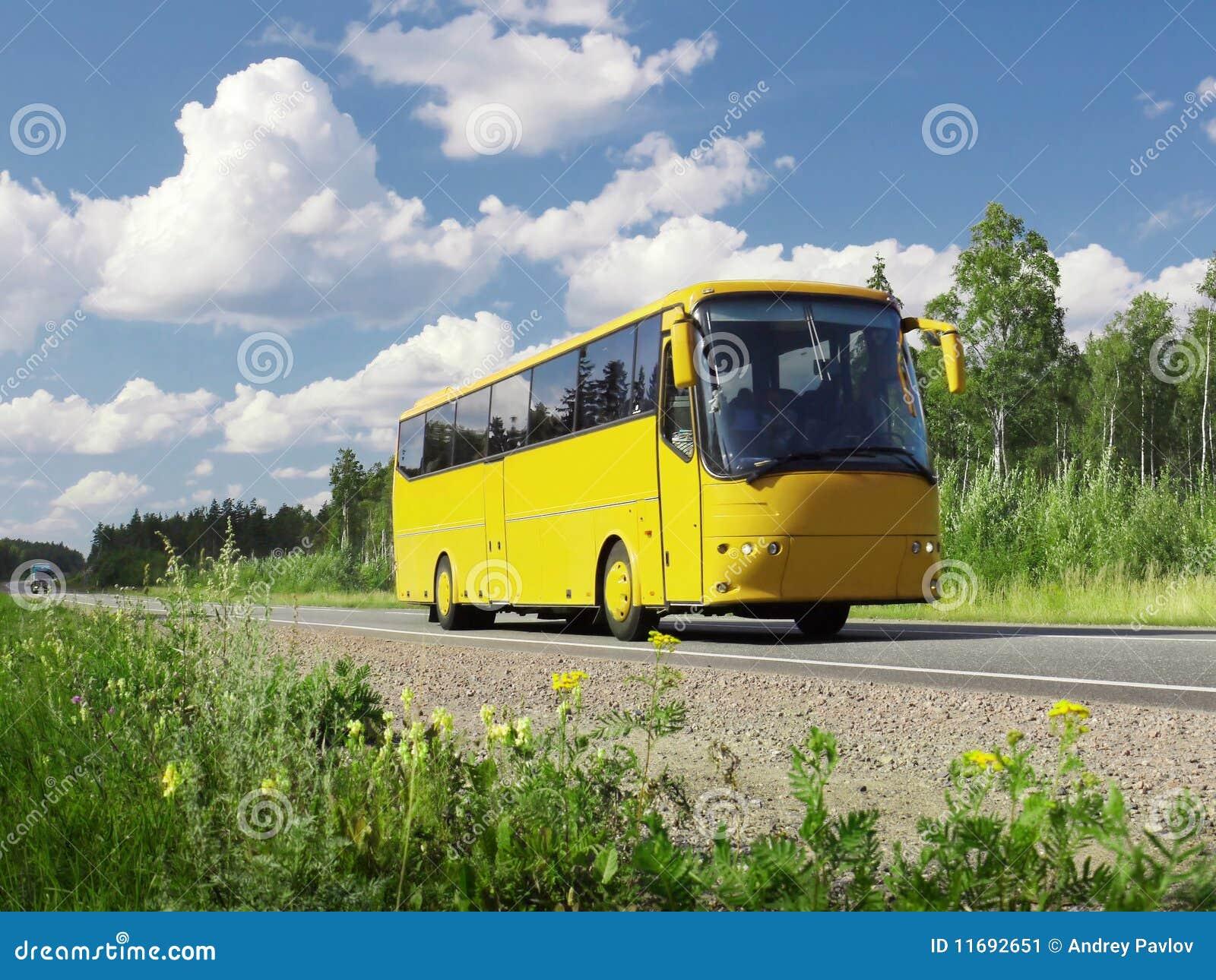 Omnibus turístico amarillo en la carretera y el paisaje rural