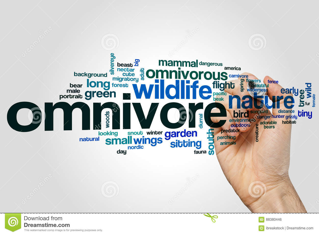 Omnivore word cloud