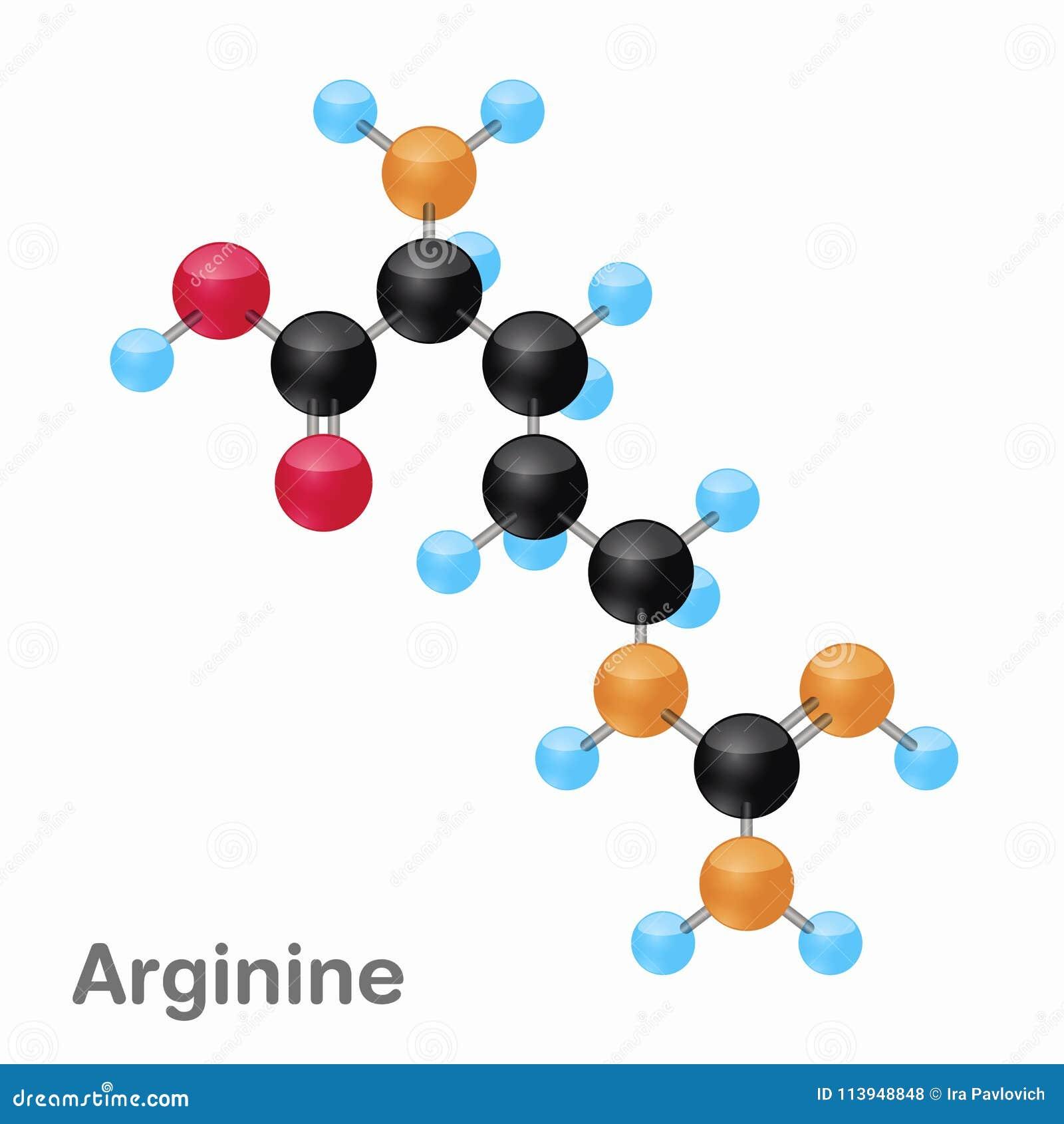 Omposition y estructura moleculares de la arginina, Arg, mejor para los libros y la educación