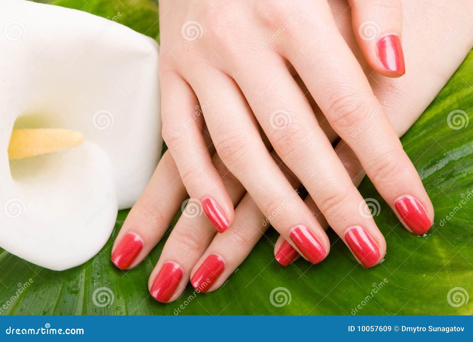 Omsorg hands kvinnan