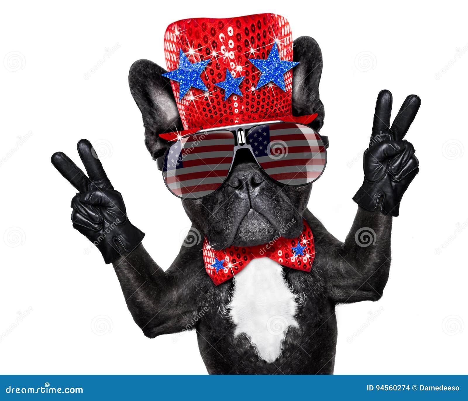 Onafhankelijkheid dag vierde van juli-hond