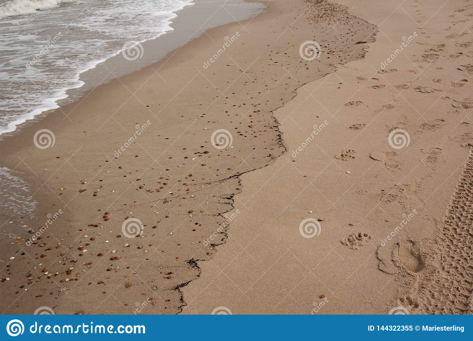 Onda de oceano bonita macia no Sandy Beach Fundo