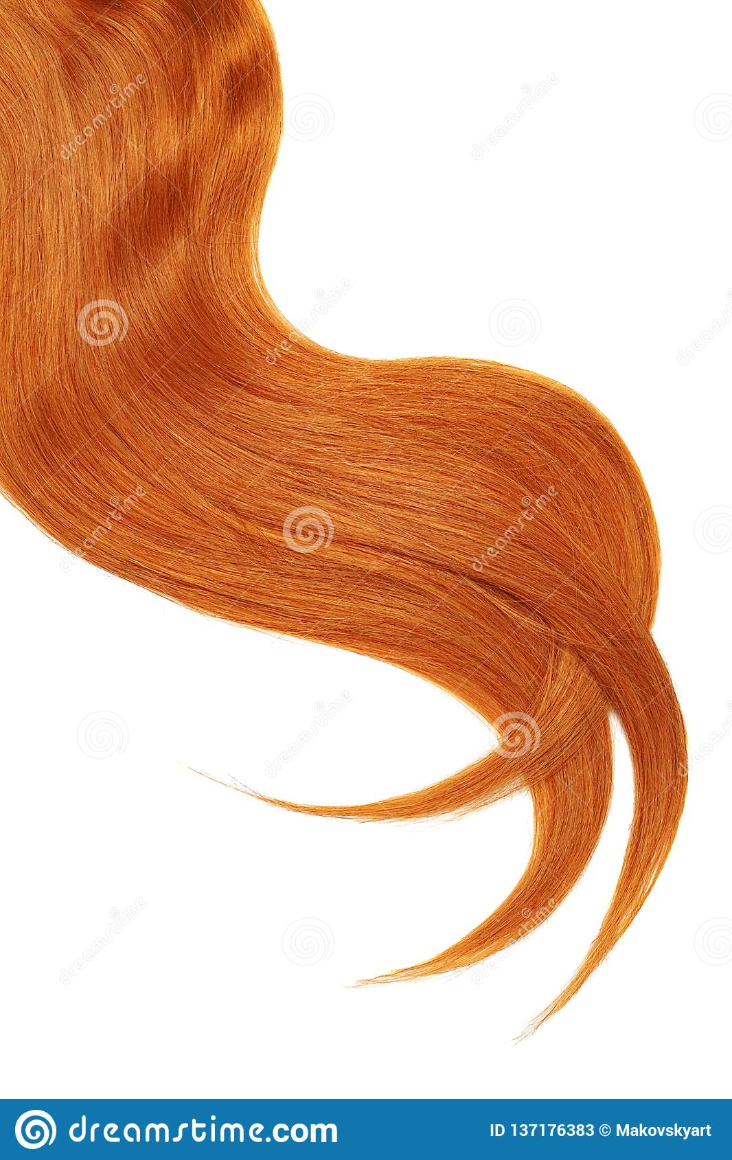 Onda do cabelo vermelho natural no fundo branco Rabo de cavalo ondulado