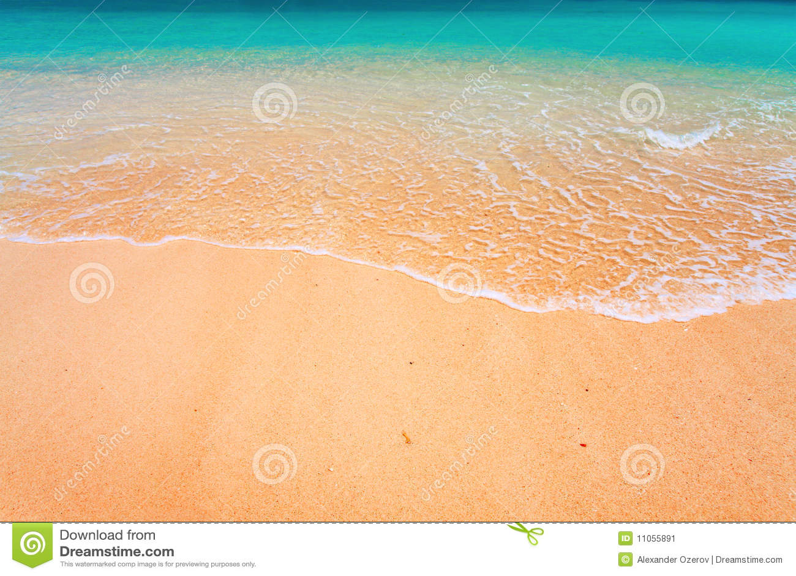 Onda e spiaggia tropicale