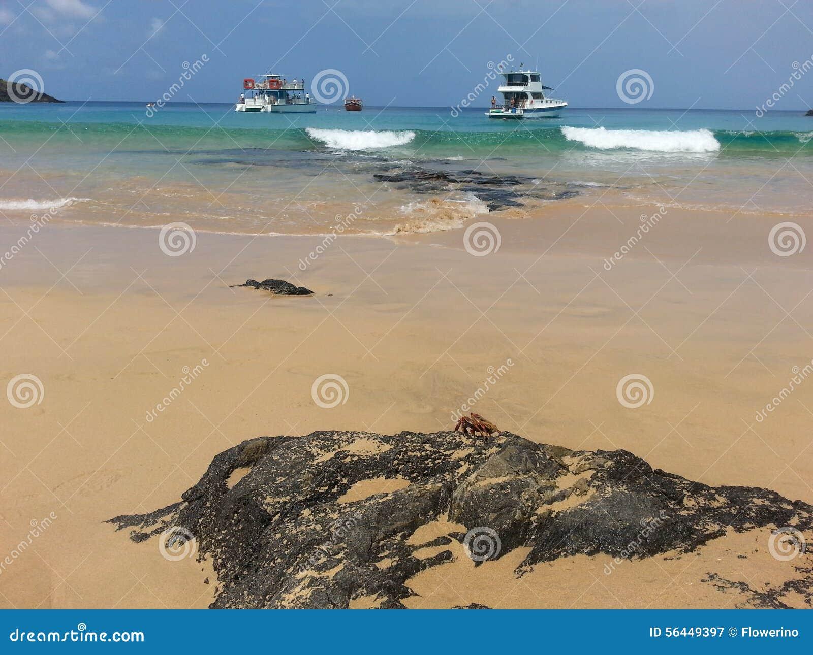 Ondas, barcos y roca negra