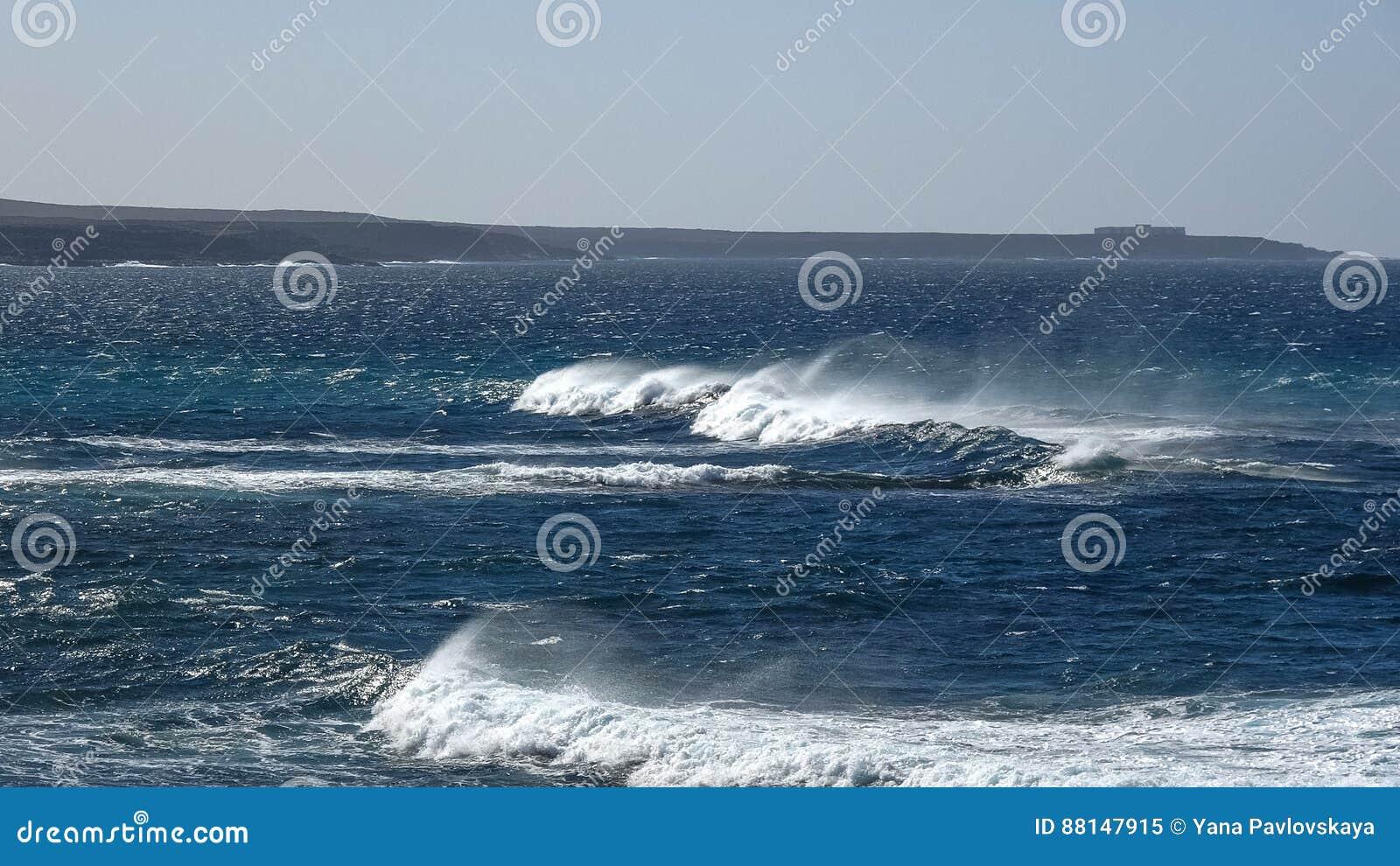 Ondas de oceano no litoral rochoso