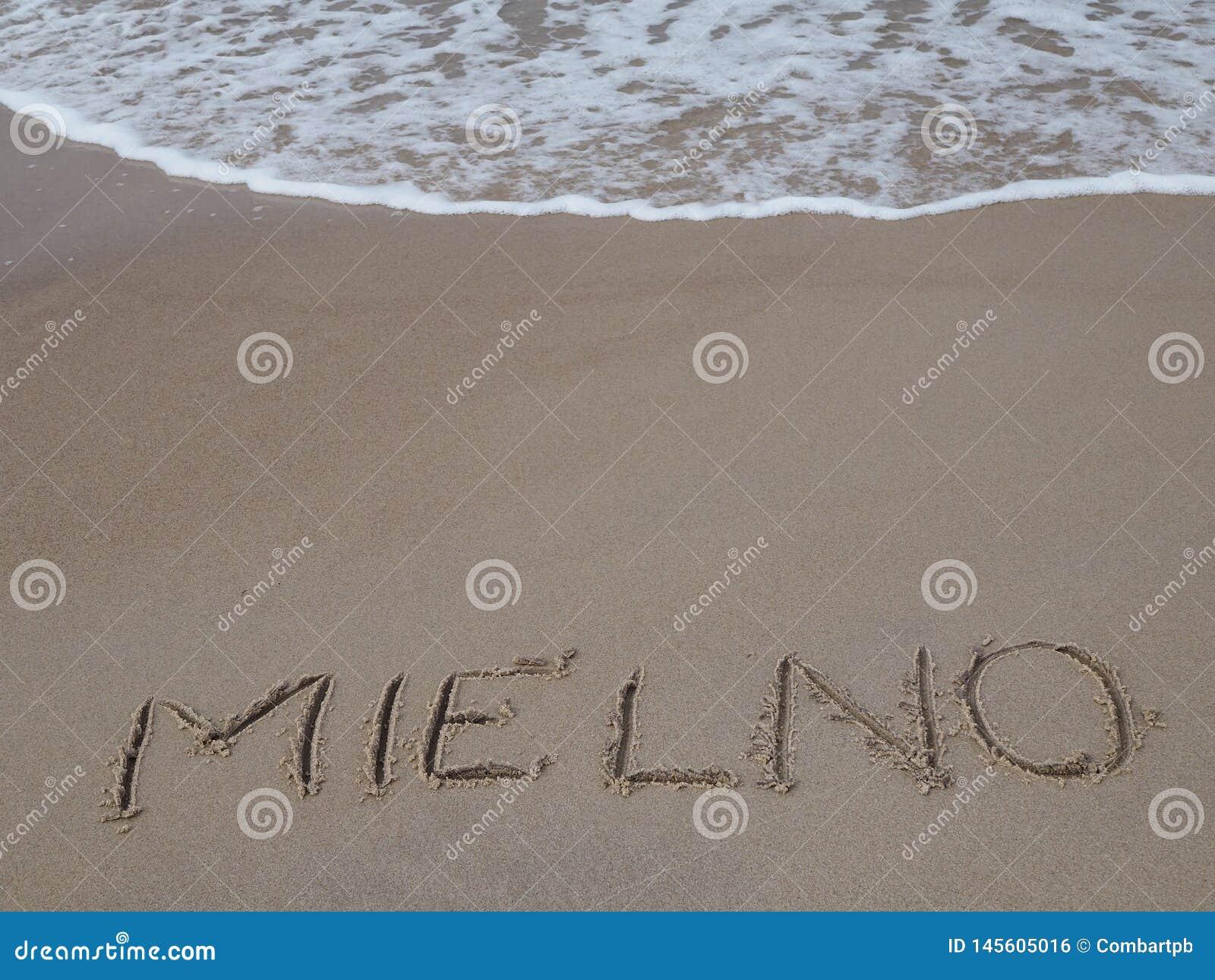 Ondas que se rompen en la playa en Mielno