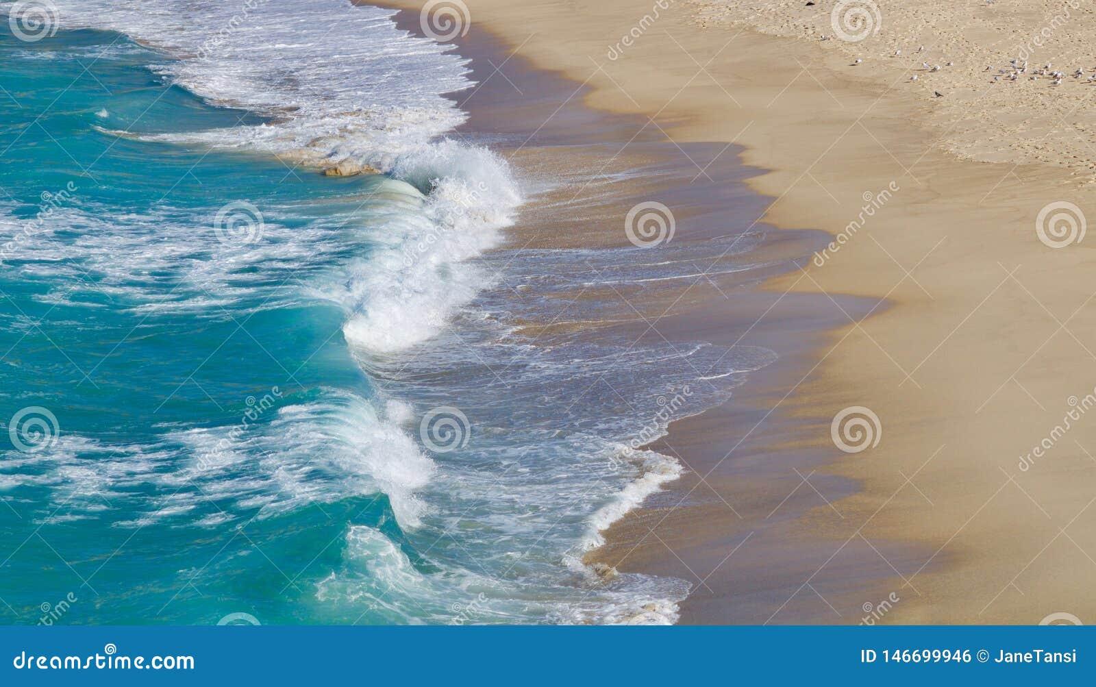 Ondas que traslapan sobre una playa arenosa - imagen