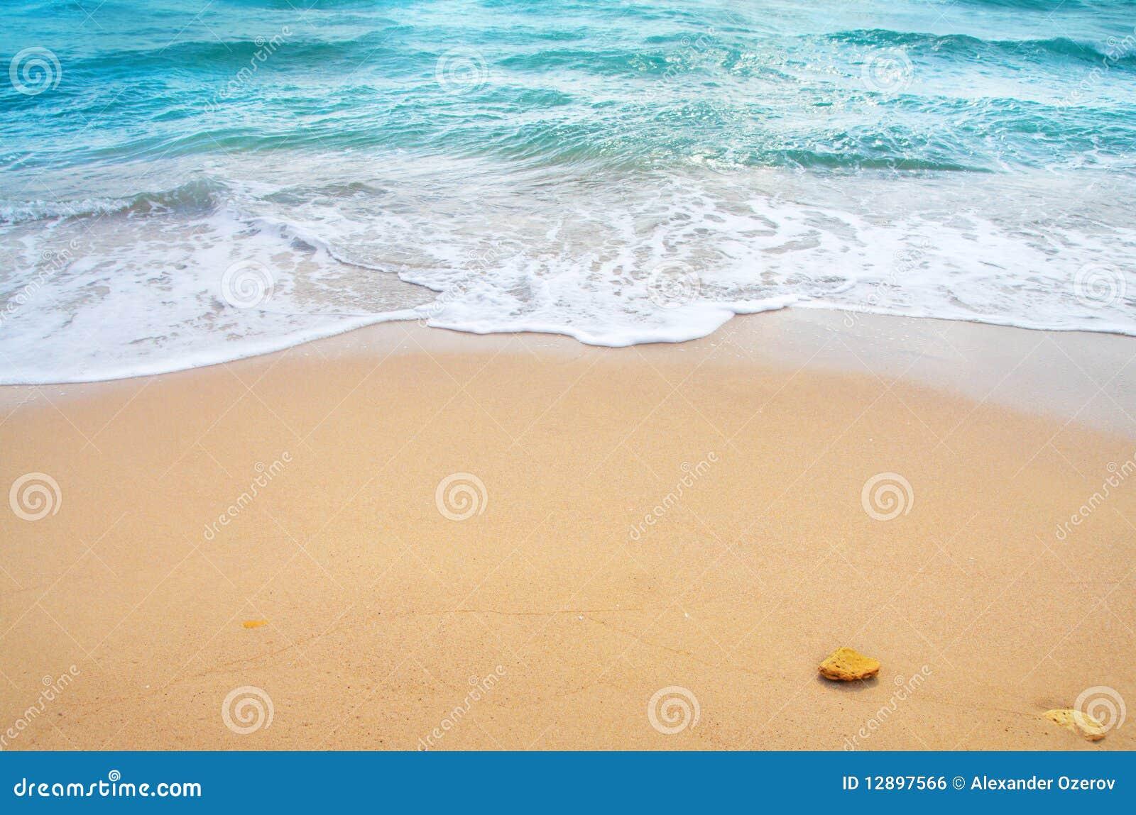 Onde d océan et plage tropicale