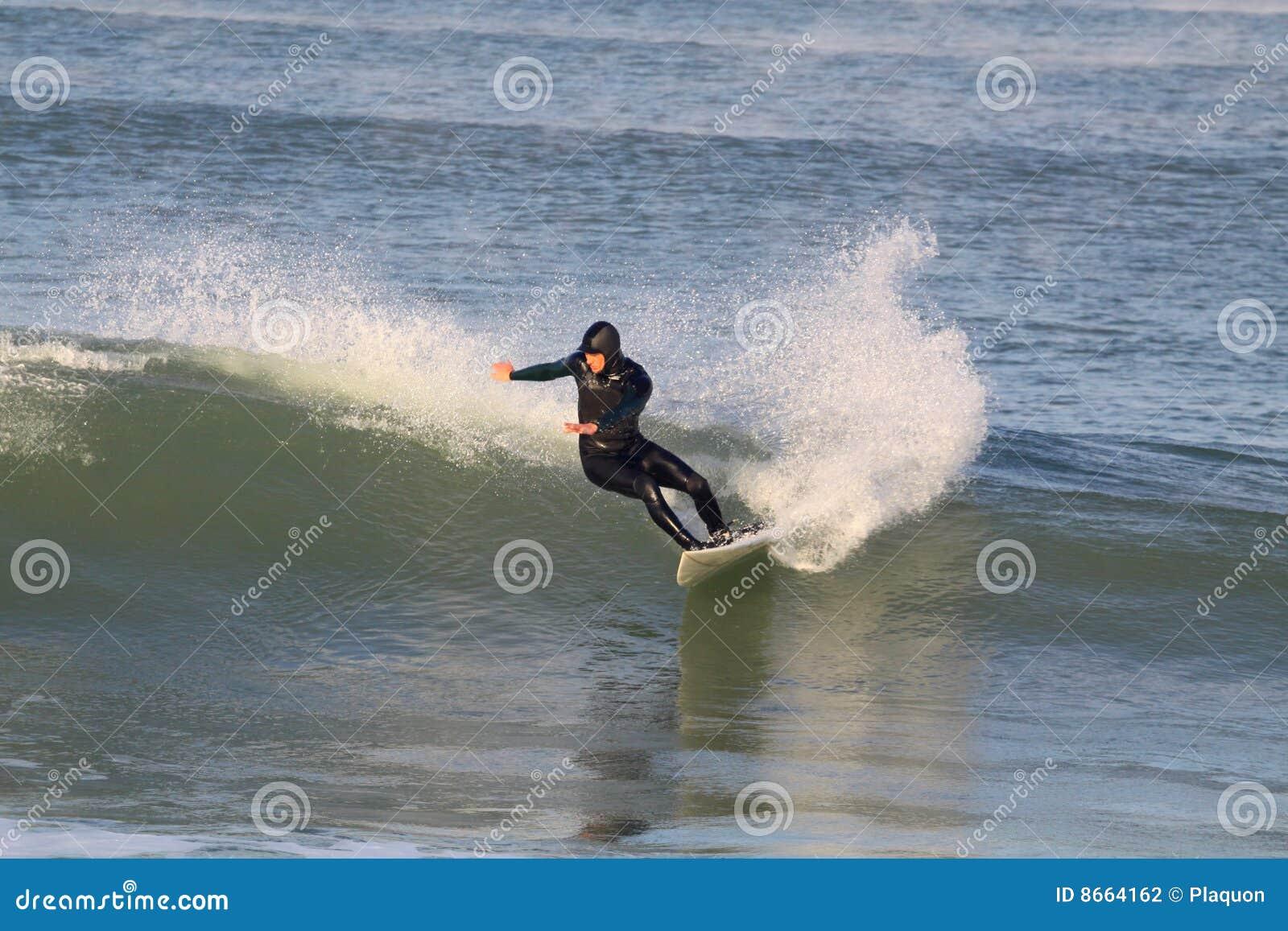 Onde de surfer d équitation