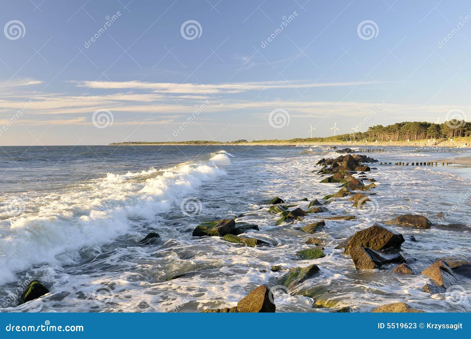 Ondes rocheuses de rivage