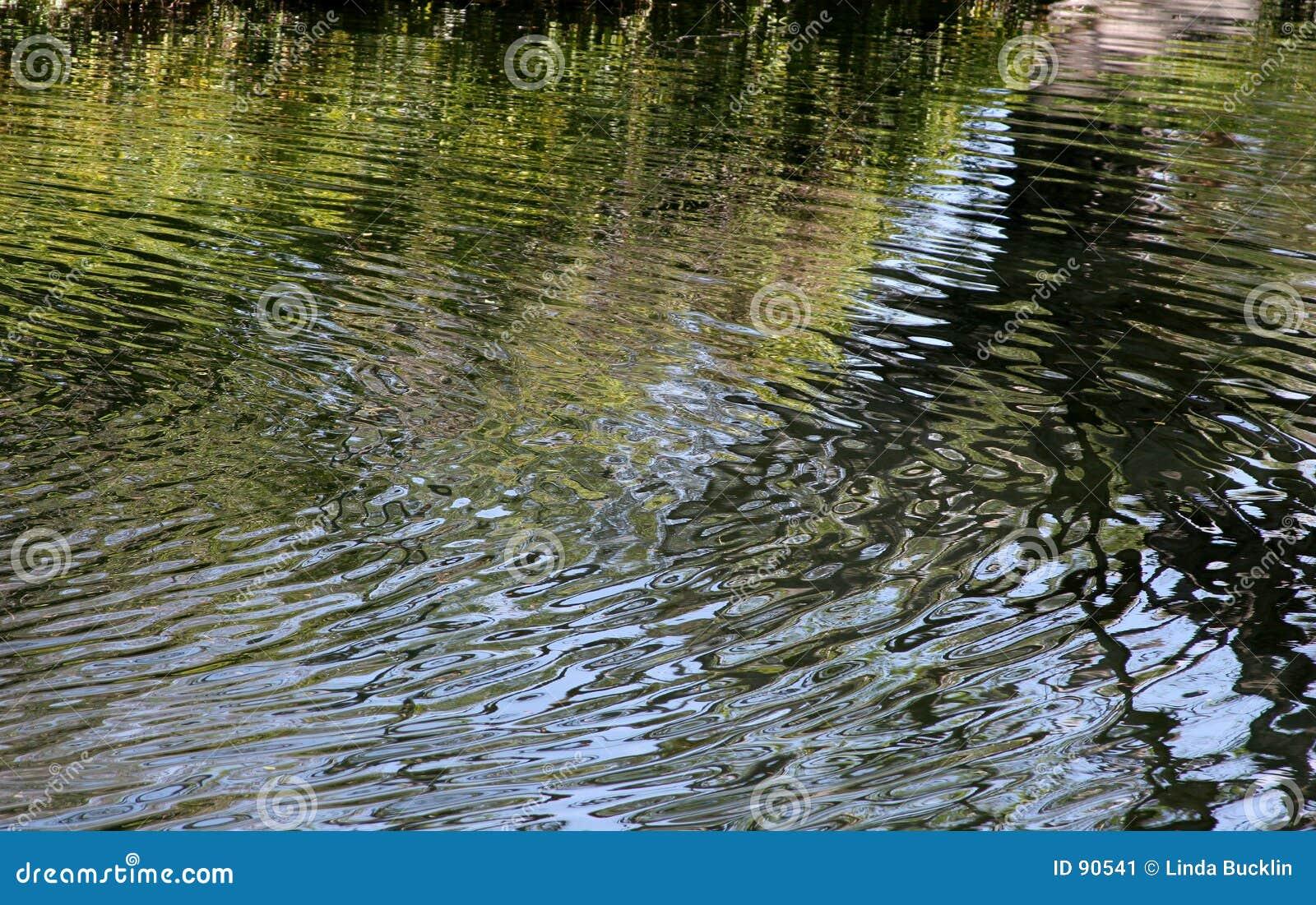 Ondinhas da água