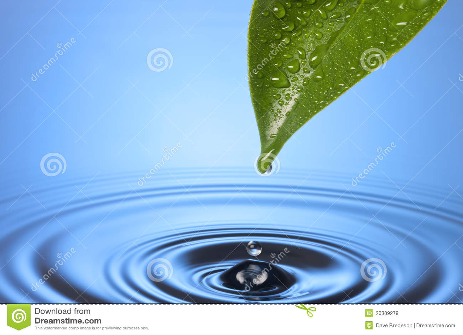 Ondulaciones de la hoja de la gota del agua