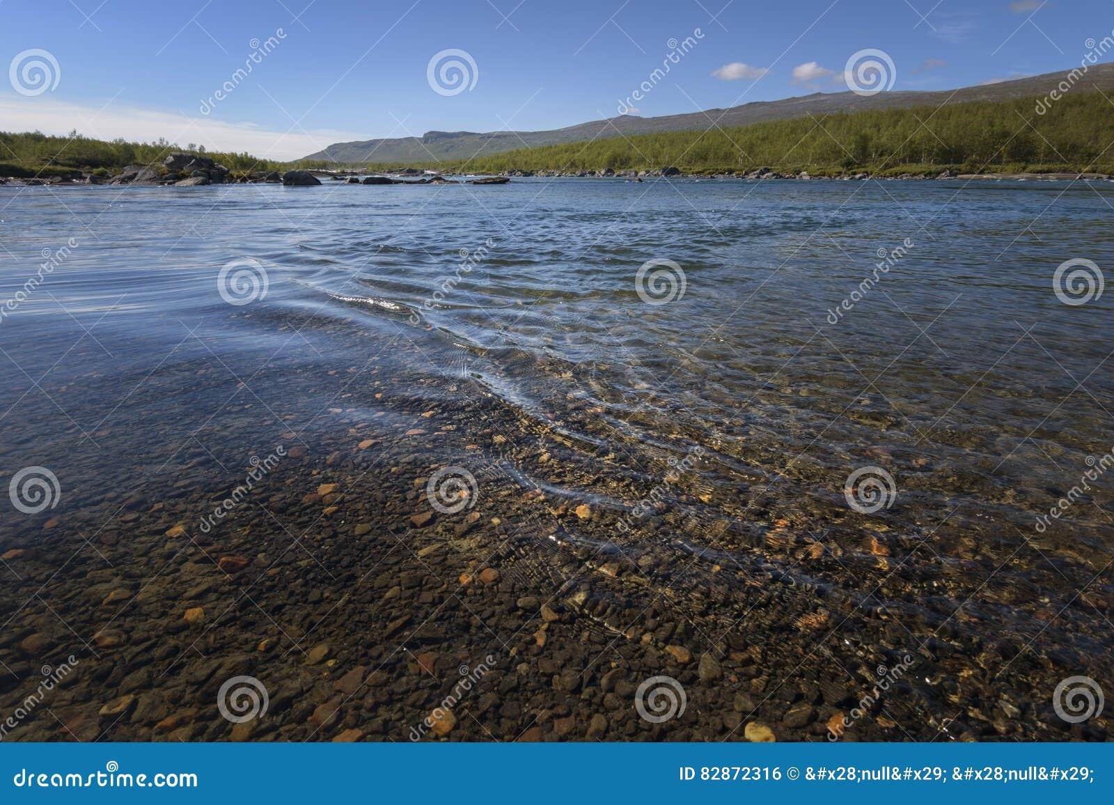 Ondulaciones tranquilas hermosas en la agua corriente con las piedras asombrosas de la parte inferior de río de la coloración