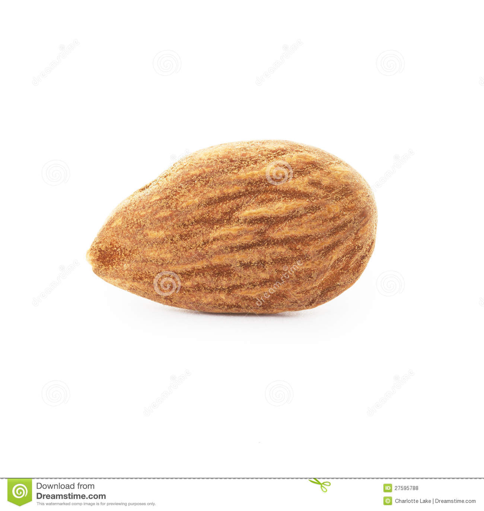 One Almond Royalty Free Stock Photos - Image: 27595788 Almond