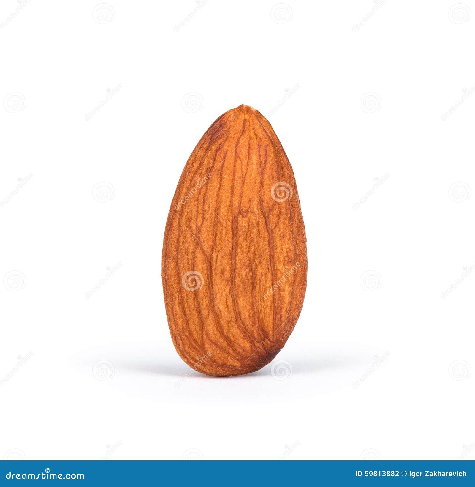 One Almond Amir One almond stock photo...