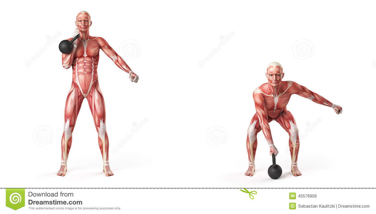 One Arm Kettlebell Clean Stock Illustration  Image Of