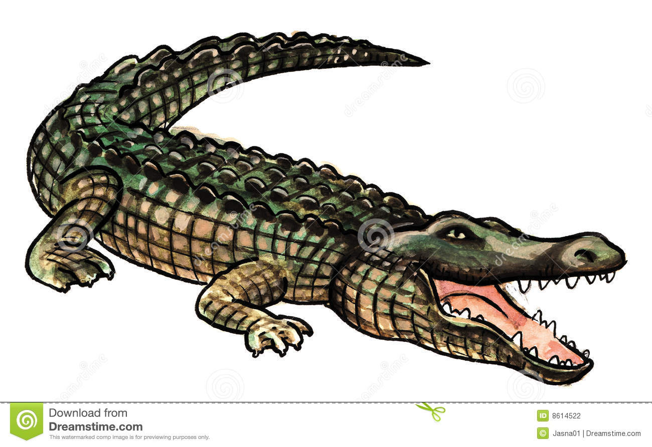 one big crocodile stock photography image 8614522 mountain lion clip art free mountain lion head clipart