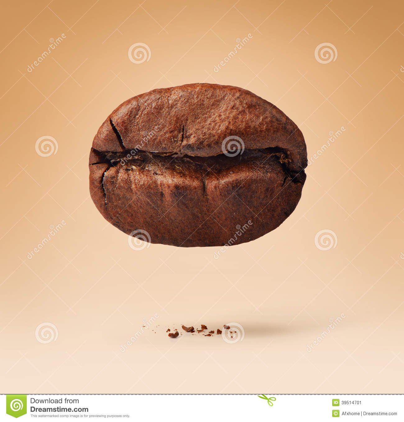 One coffee bean on background