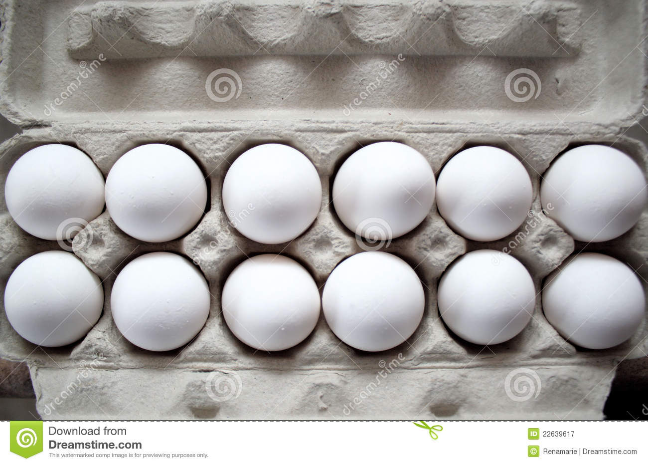 One Dozen Eggs Royalty Free Stock Photography - Image ...