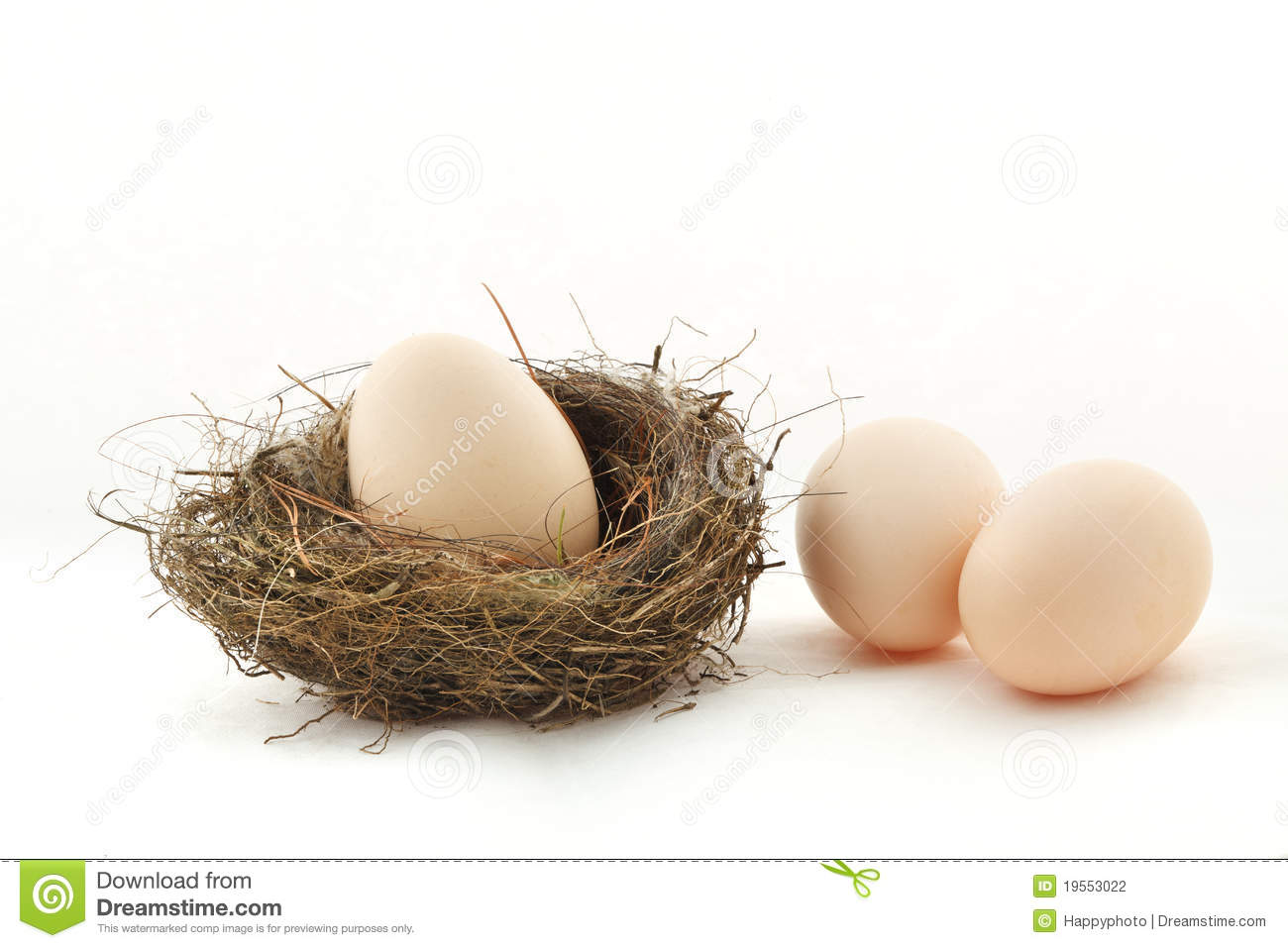 One Egg Inside The Nest And Two Eggs Outside Stock