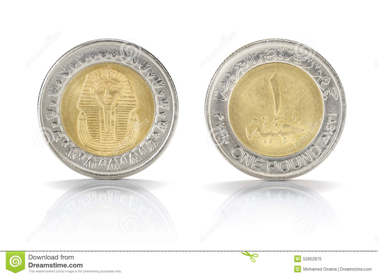 Egyptian pound stock images 245 photos one egyptian pound coin front and back sides of one egyptian pound coin isolated on biocorpaavc Images