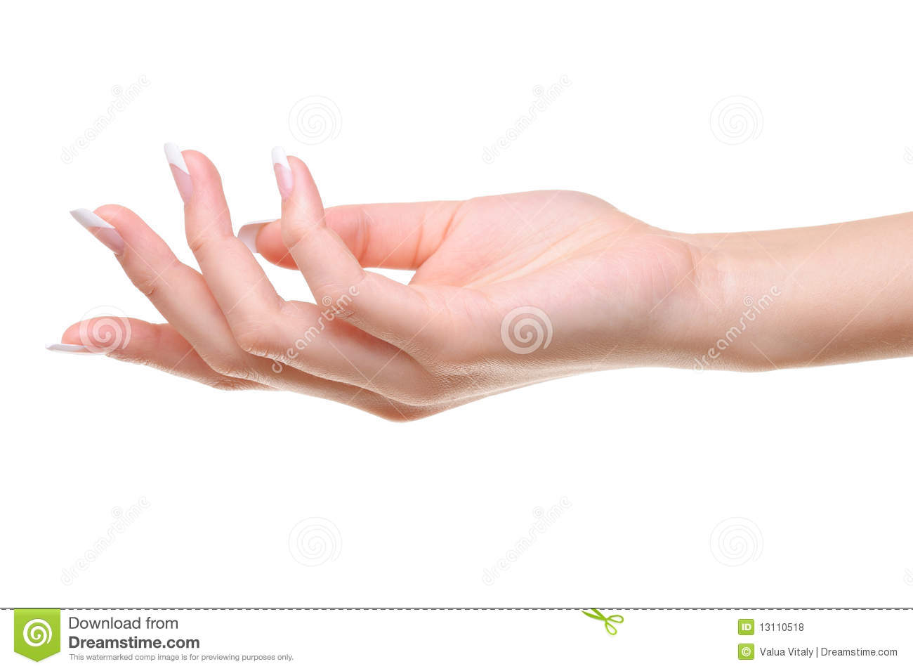 one elegant female hand stock photo image of care close 13110518