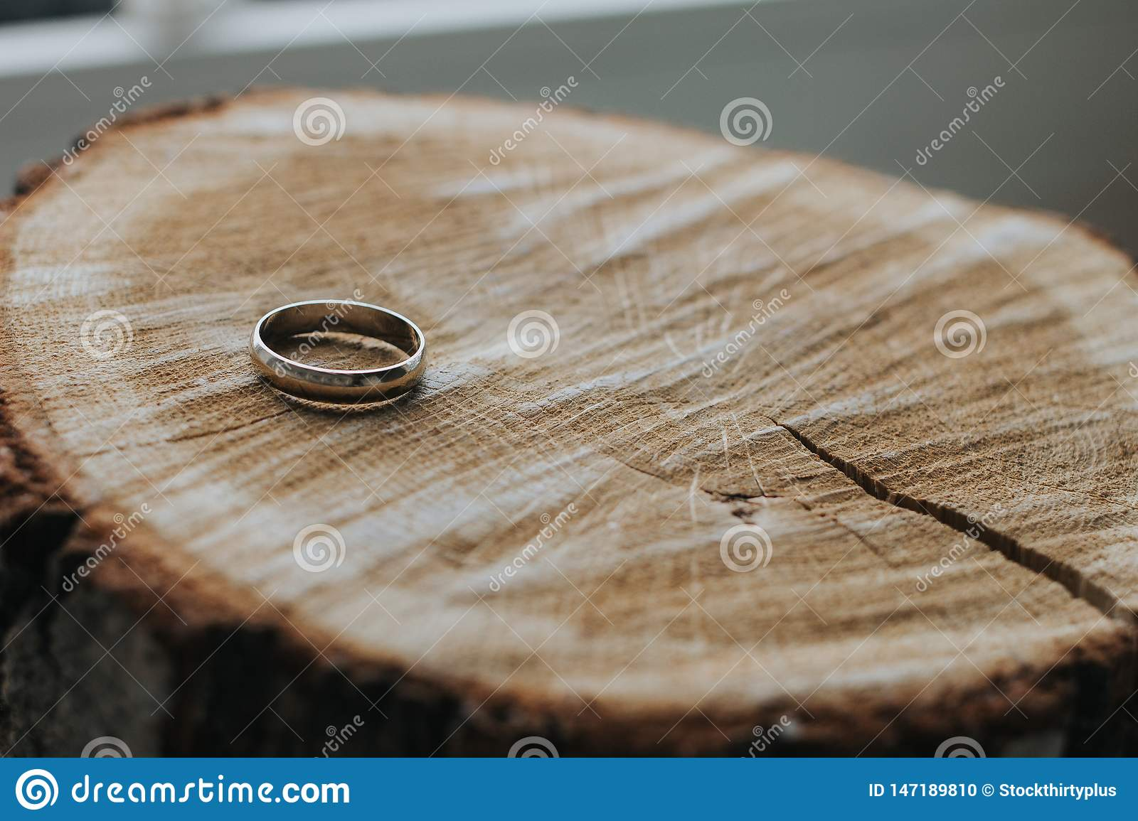 One gold wedding ring lying on the wooden stump cut. Close-up. Focus on the ring, the background is blurred