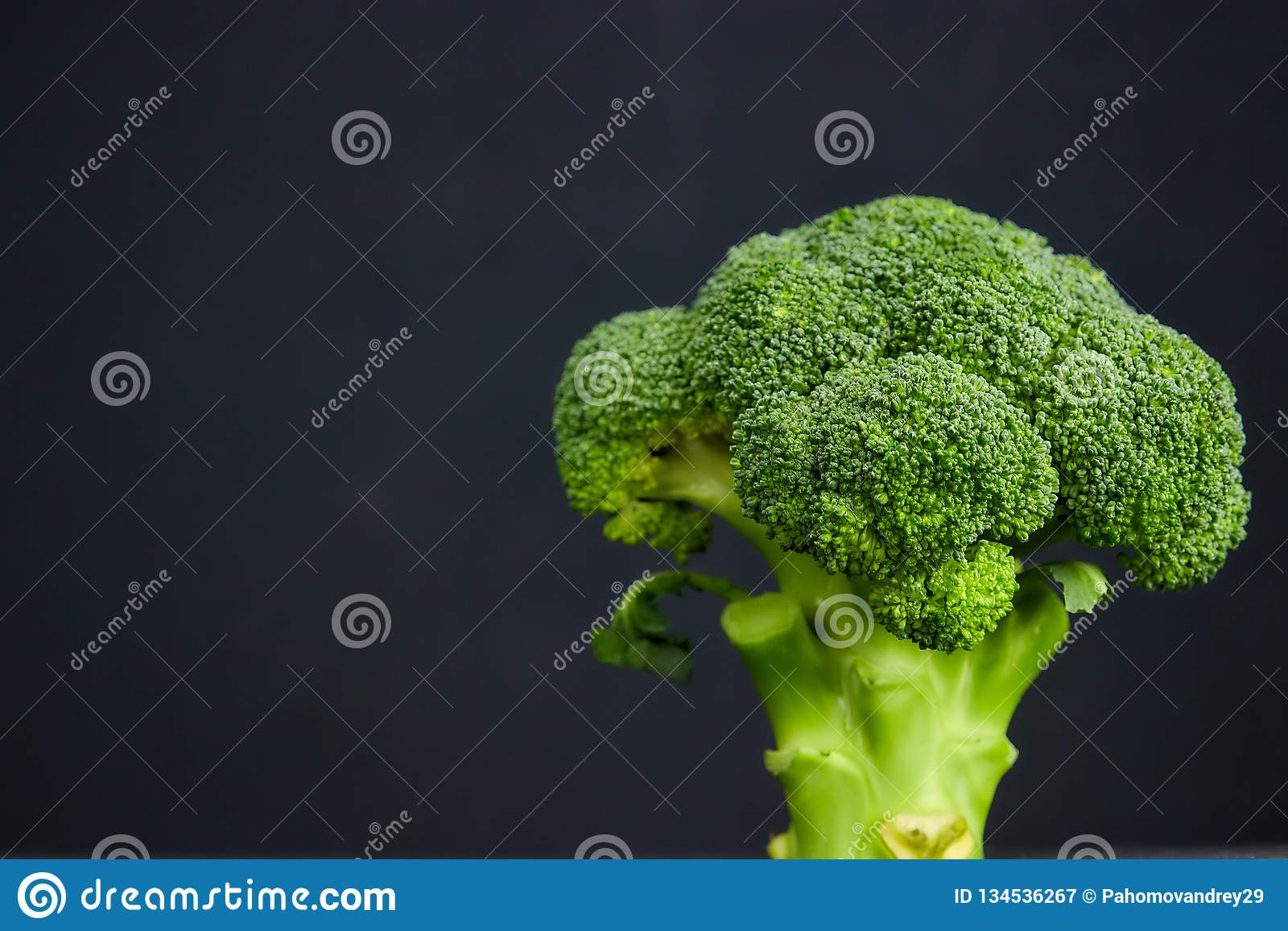 One head of healthy salad. fresh green broccoli. horizontal view of green vegetable flower. healthy diet. copy space. green. Two heads of healthy salad. fresh royalty free stock photography