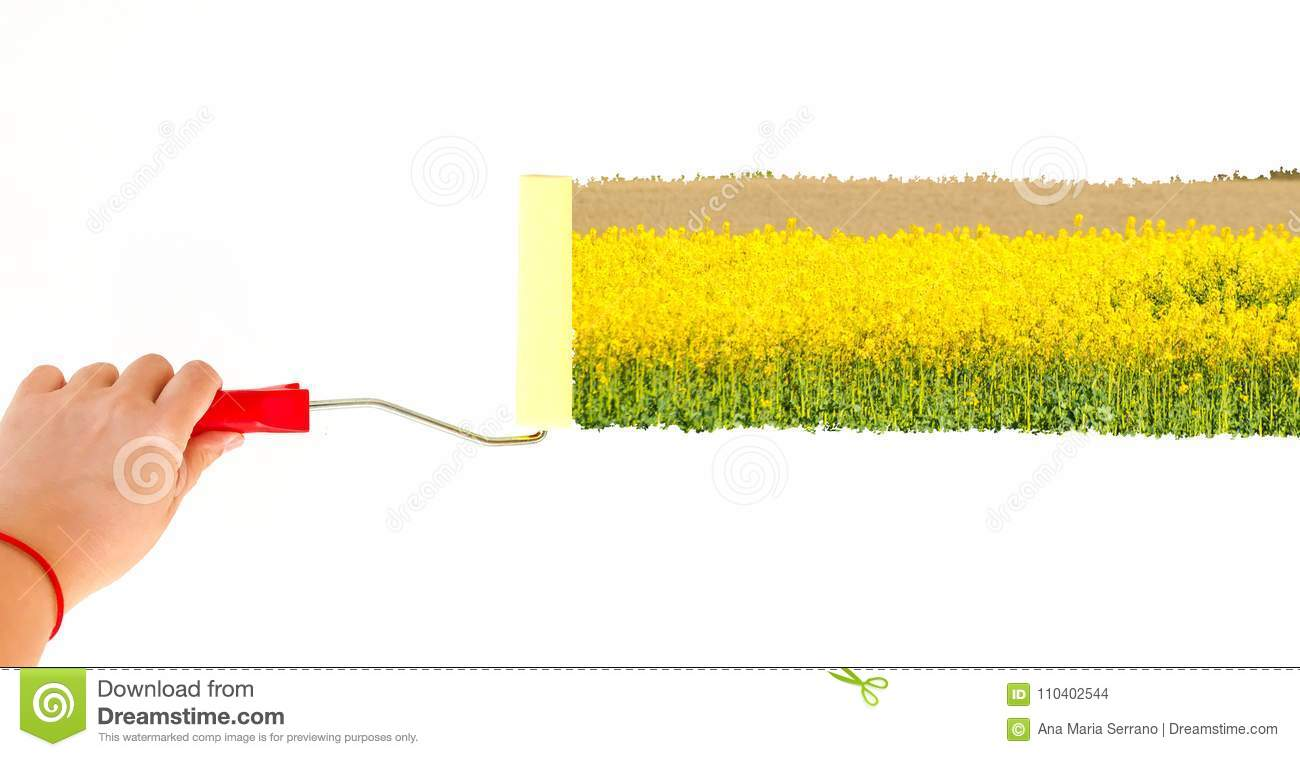 One Person Painting A Landscape With Yellow Flowers On A White Wall ...