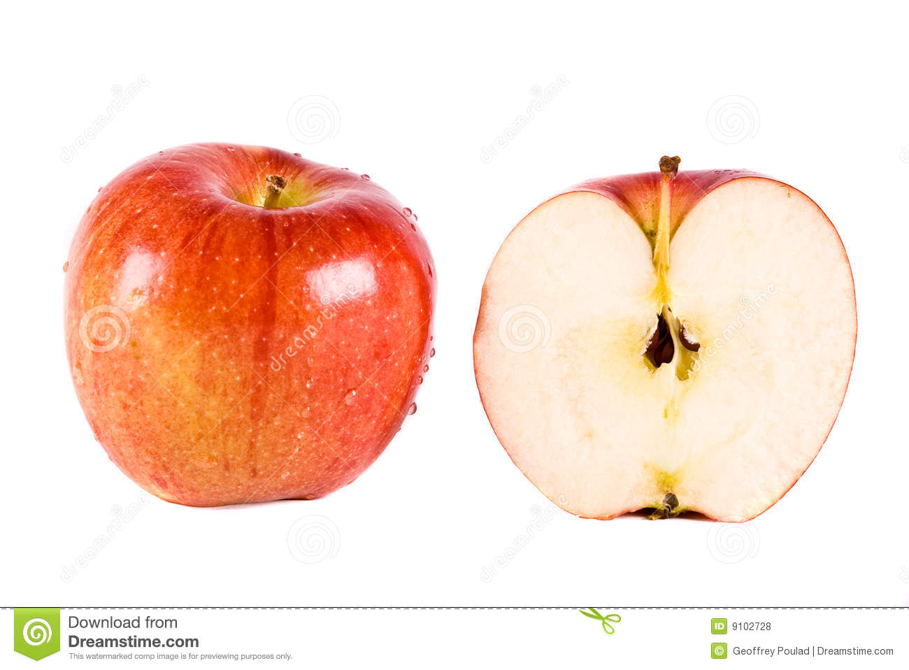 Image Result For Royalty Free Music Apple