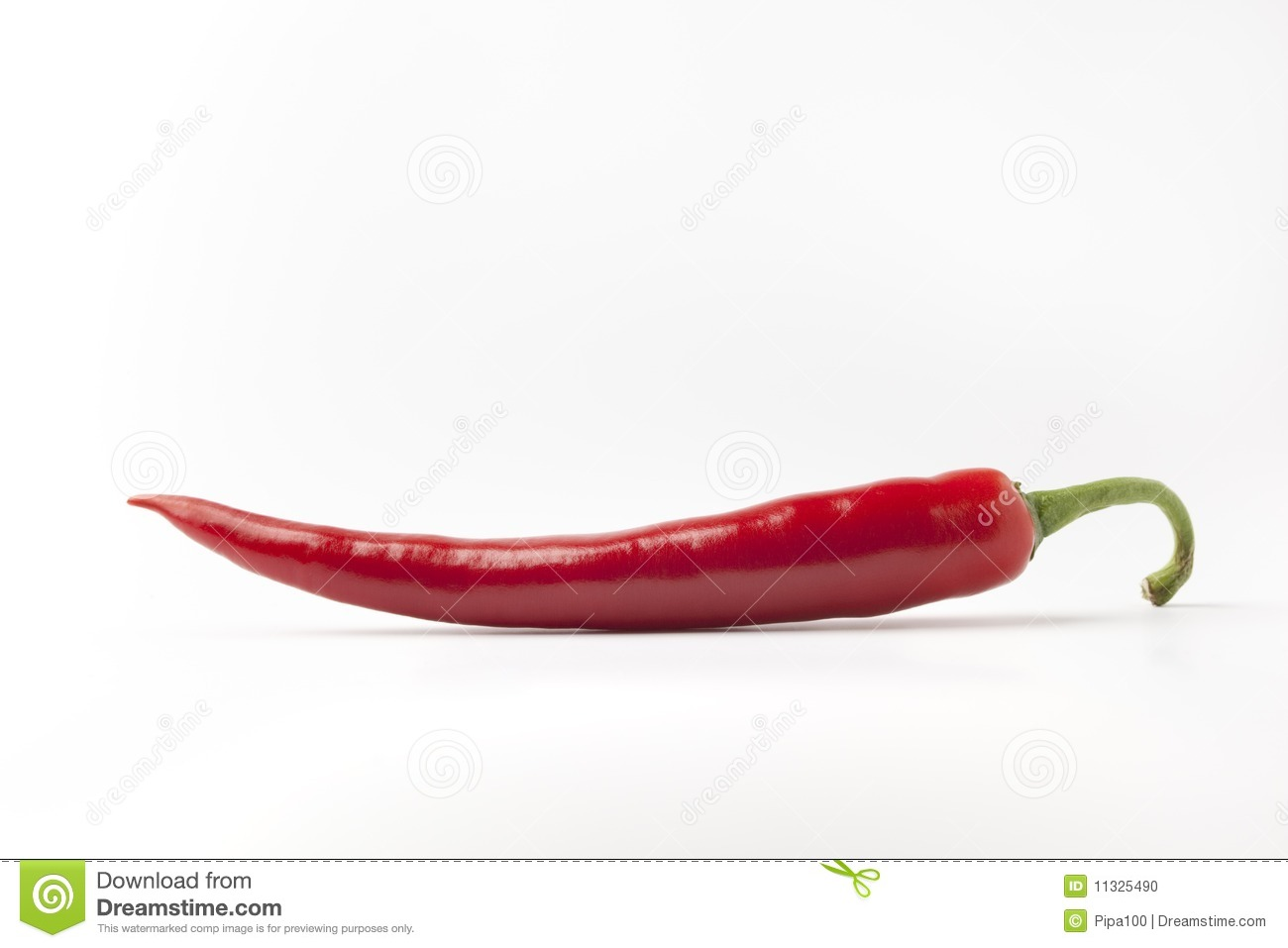 one red hot chili pepper on white background stock photo image 11325490. Black Bedroom Furniture Sets. Home Design Ideas