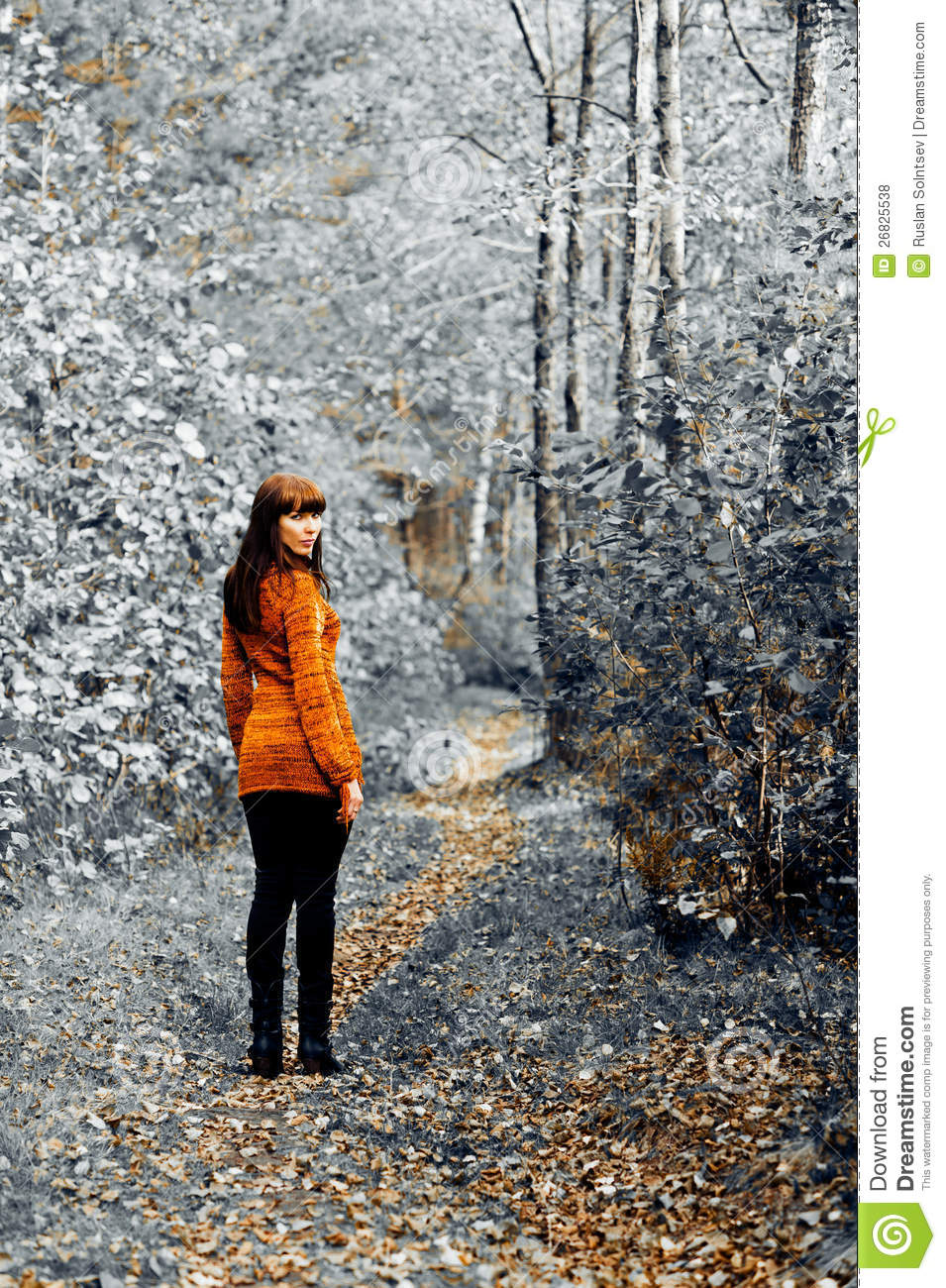 Download One way stock photo. Image of road, woman, trees, background - 26825538
