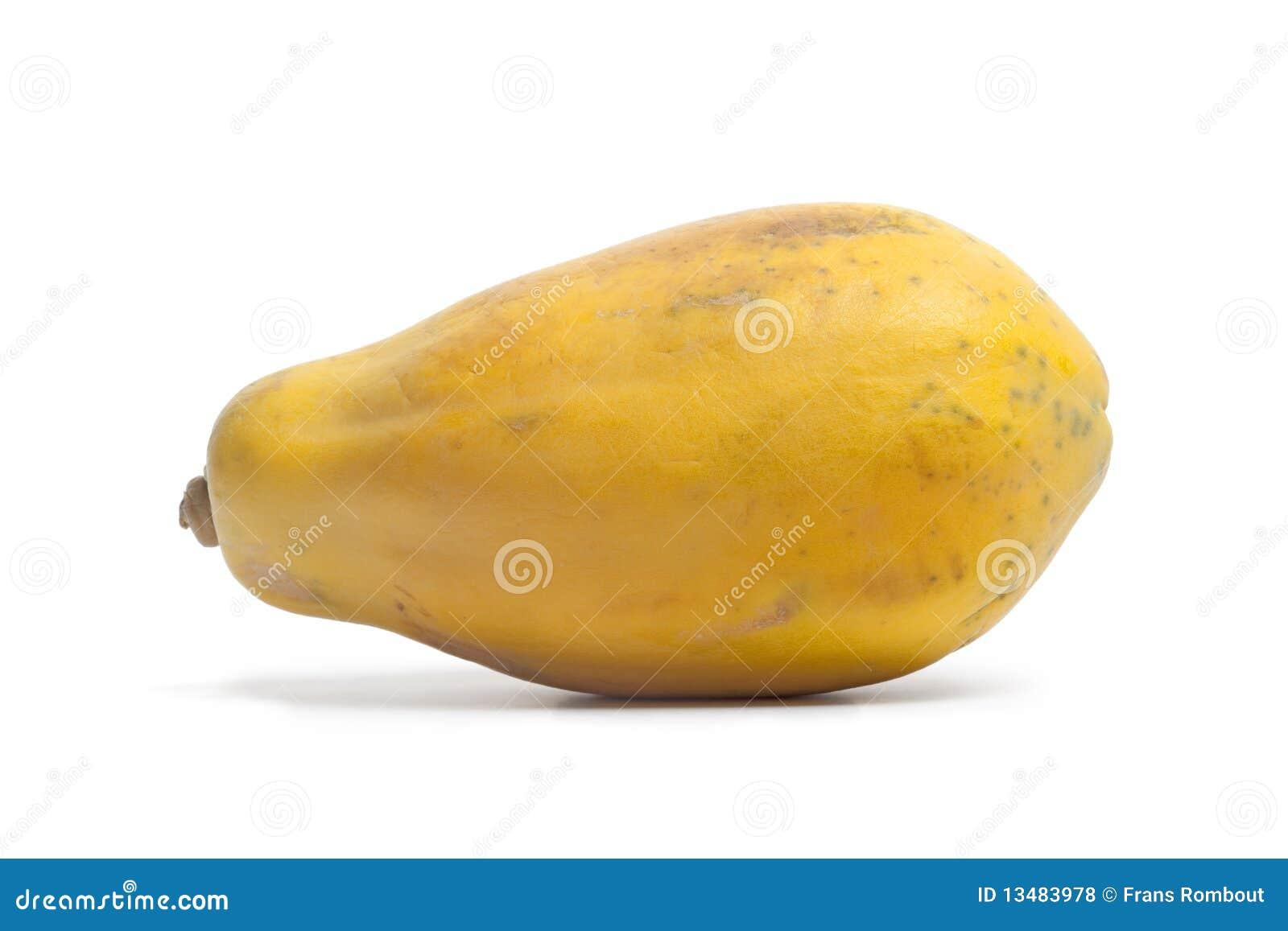 one whole single papaya fruit stock photo image 13483978
