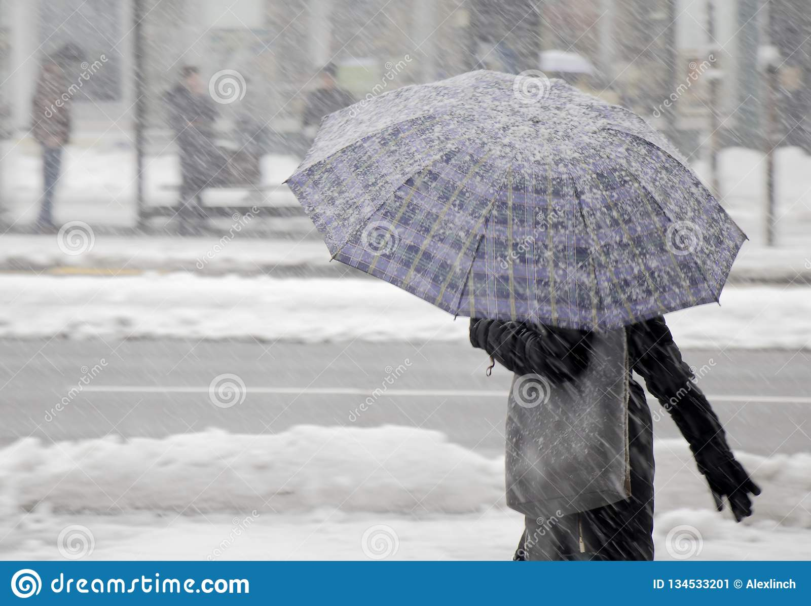 One women walking under umbrella in heavy snowfall
