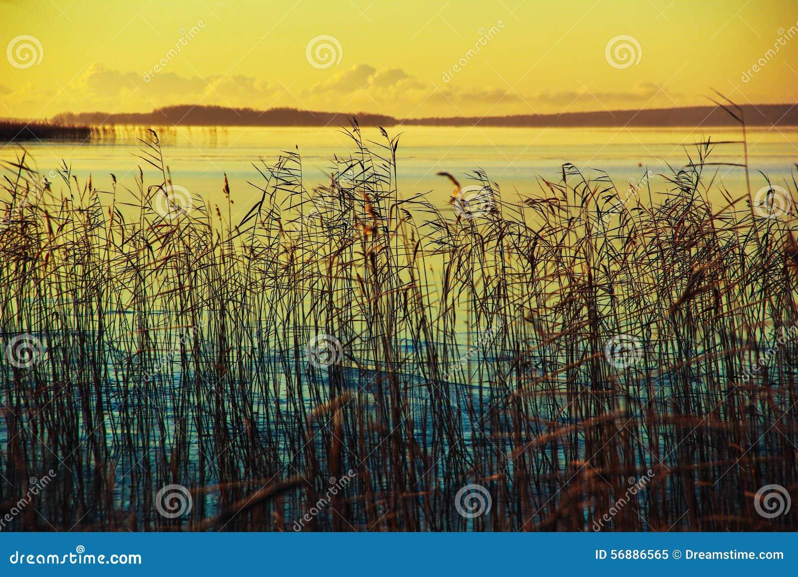 Onego jezioro