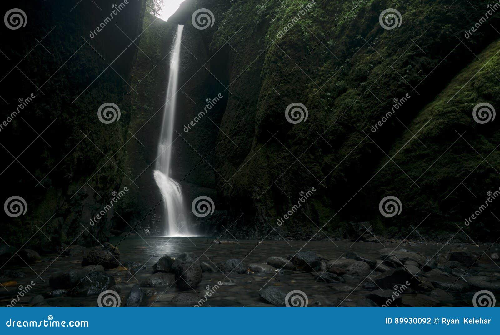 Oneonta inférieur tombe cascade située dans la gorge occidentale, Orégon